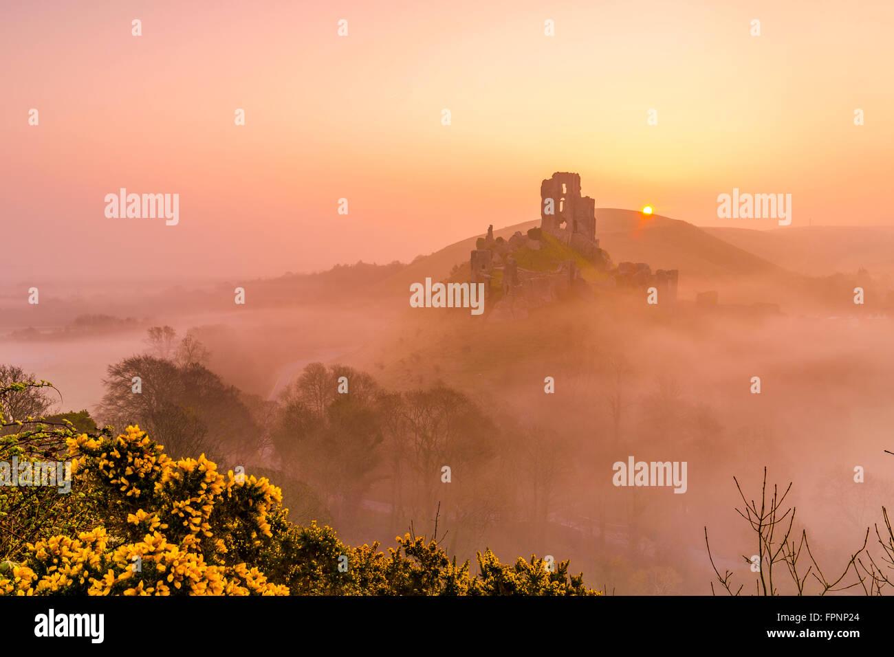 Spring Corfe castle in Dorset Stock Photo
