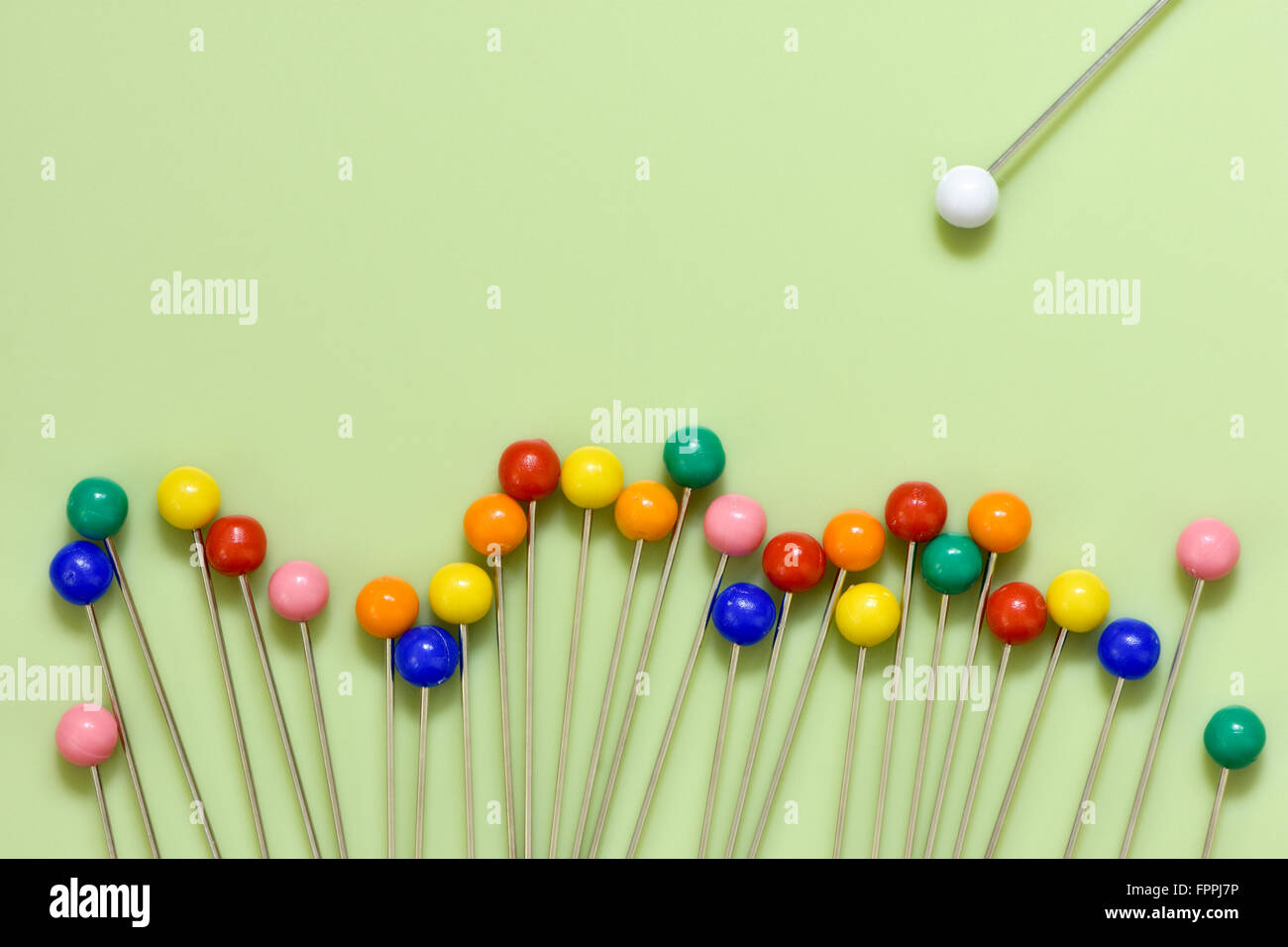 Colourful berry pins on green background with odd white one by itself with concept of odd one out - Stock Image