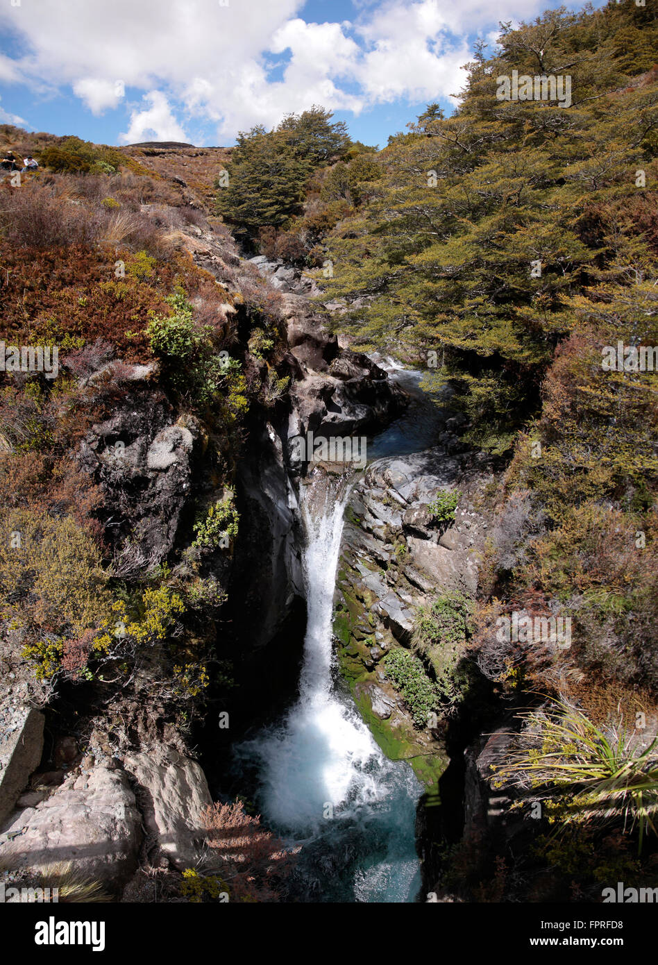 Waterfall in Tongariro National Park, Manawatu-Wanganui, New Zealand - Stock Image