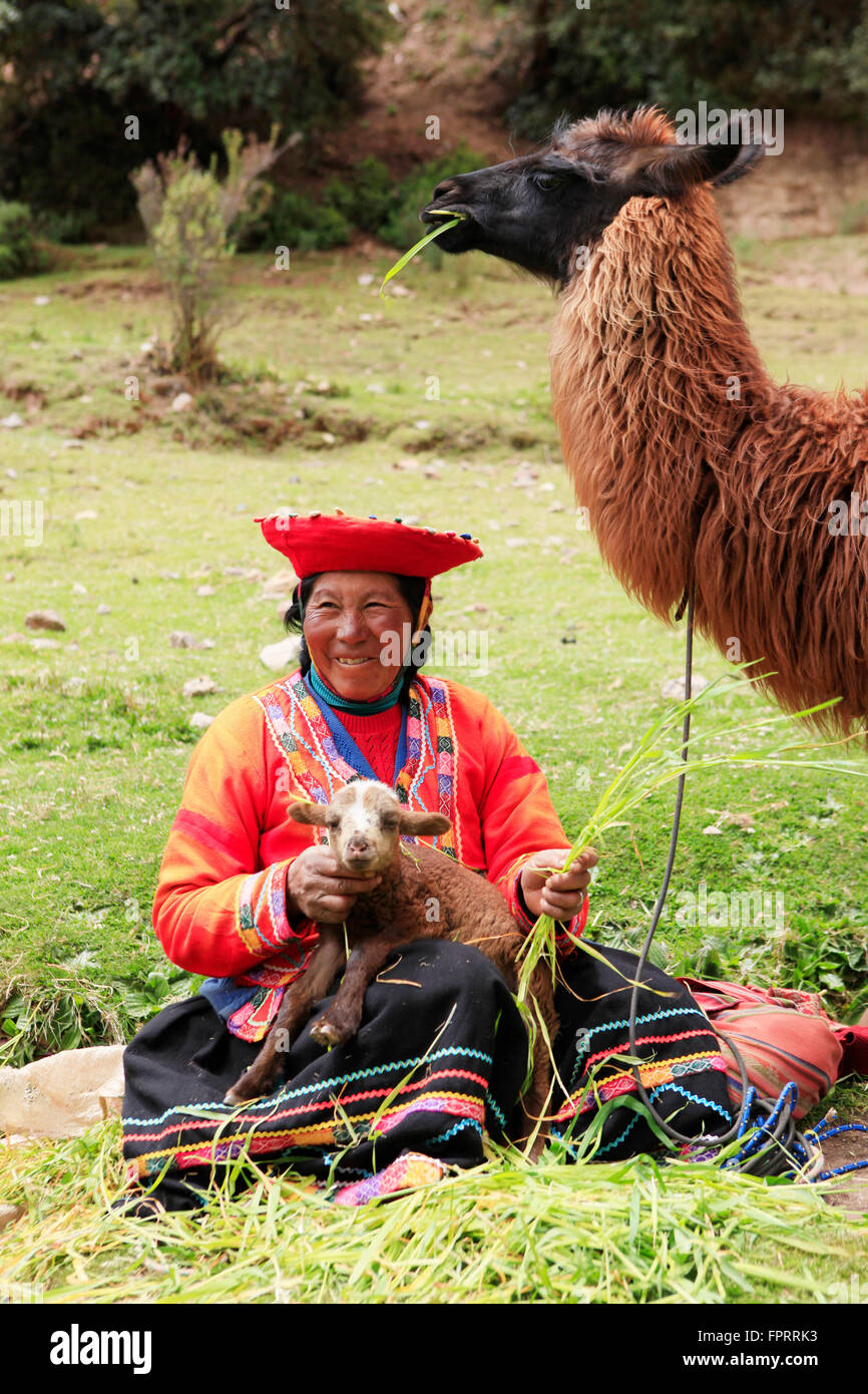 Peru, Andes, Cusco, Sacred Valley, a quechua woman with a llama, traditional clothing, indigenous person - Stock Image