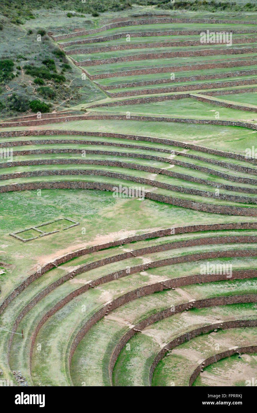 Geography/travel, South America, Peru, Cusco, Sacred Valley, Urubamba valley, Maras, Moray, verdant pre-Hispanic - Stock Image