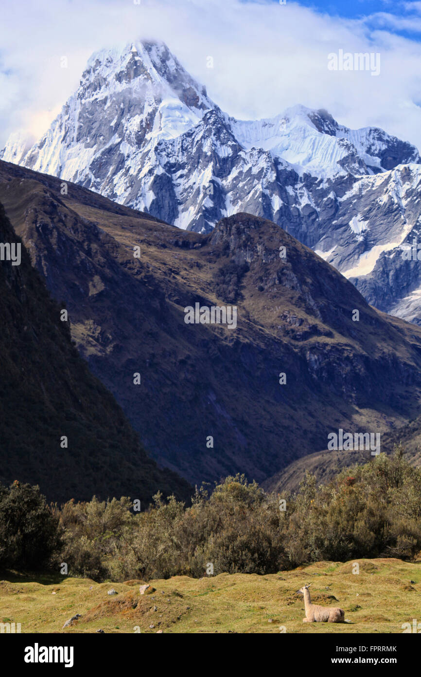 Cordillera Blanca, Huascaran National Park, with the Quebrada Santa cruz and the Taulliraju snowfie on the Santa - Stock Image