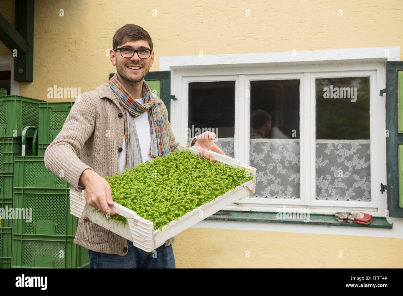 Portrait of an organic farmer holding a plant crate for salad in farm, Bavaria, Germany - Stock Image