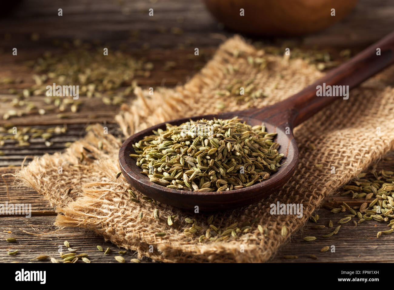 raw organic fennel Seed Ready to Use - Stock Image