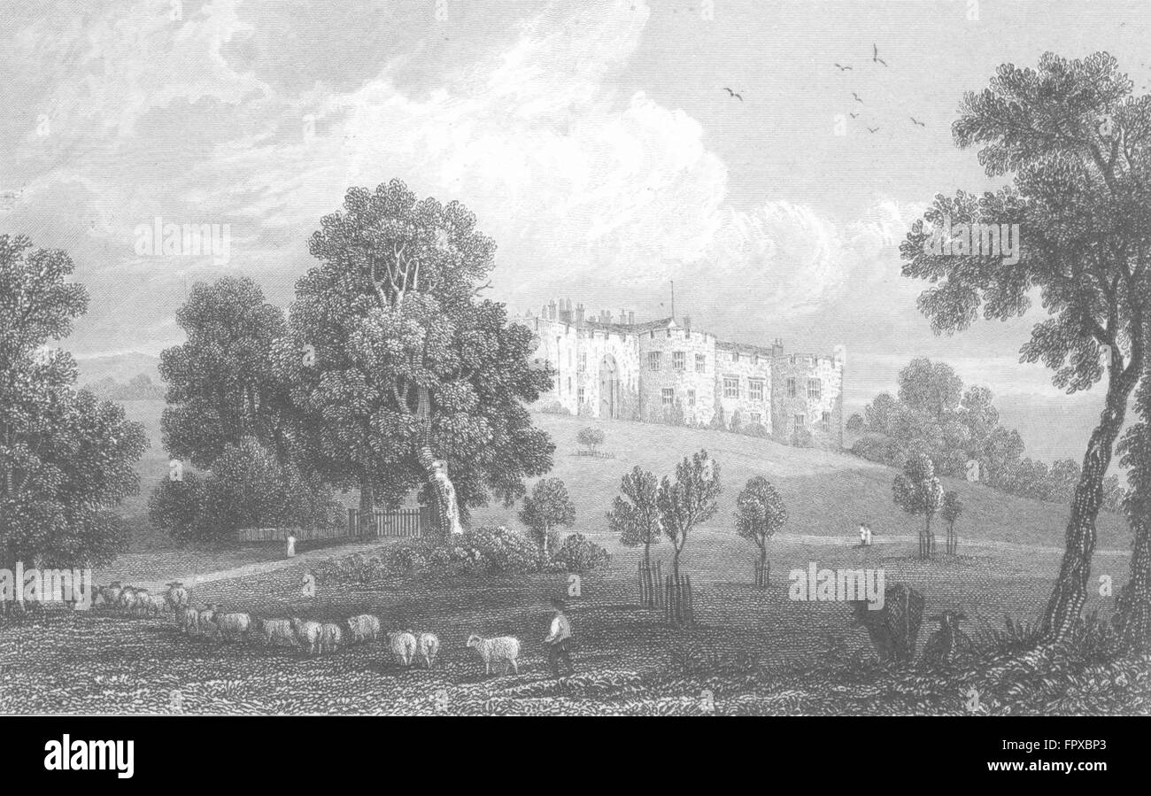 DENBIGHSHIRE: Chirk Castle: view shepherd & sheep, antique