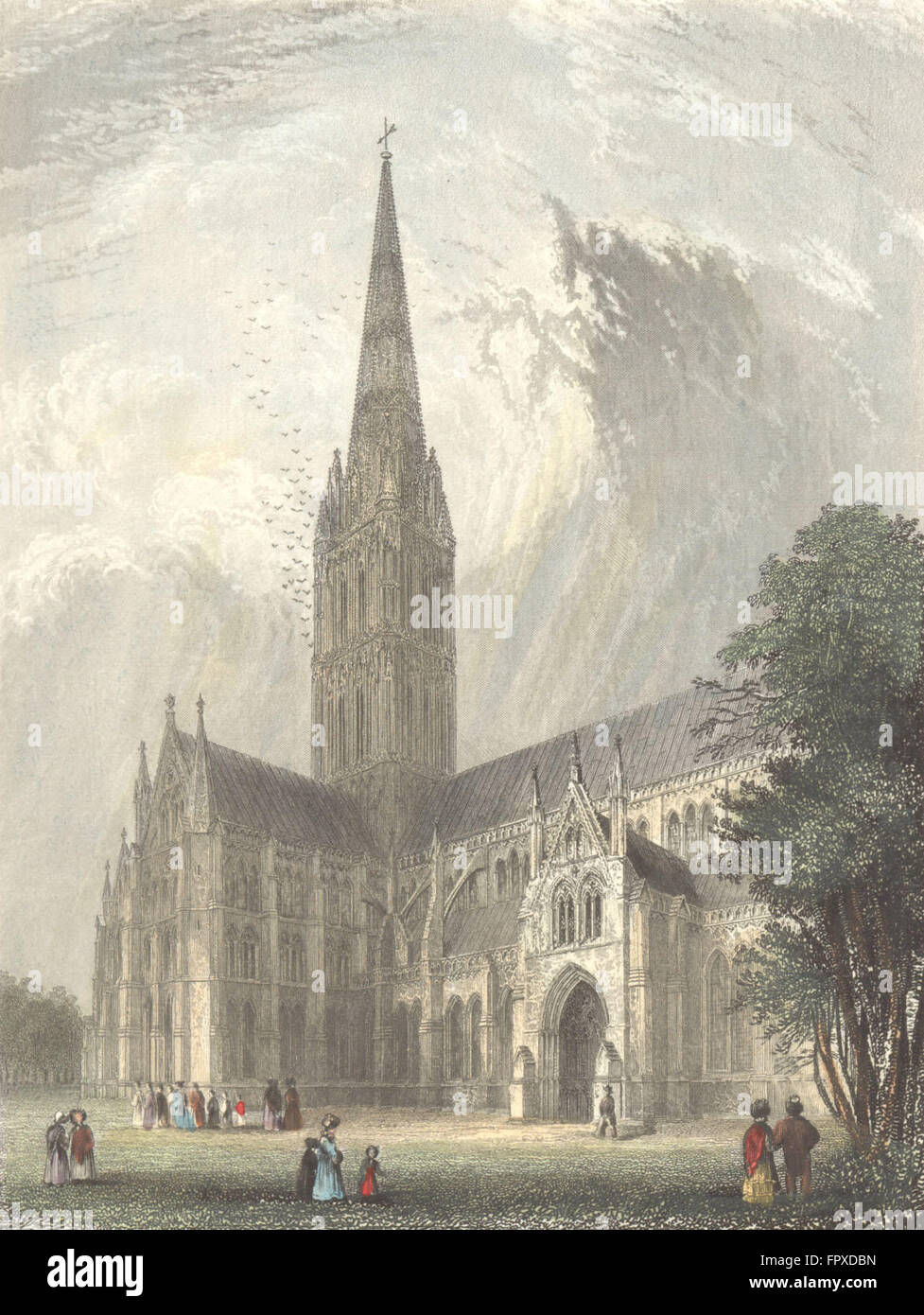 WILTS: Salisbury Cathedral, antique print 1836 Stock Photo