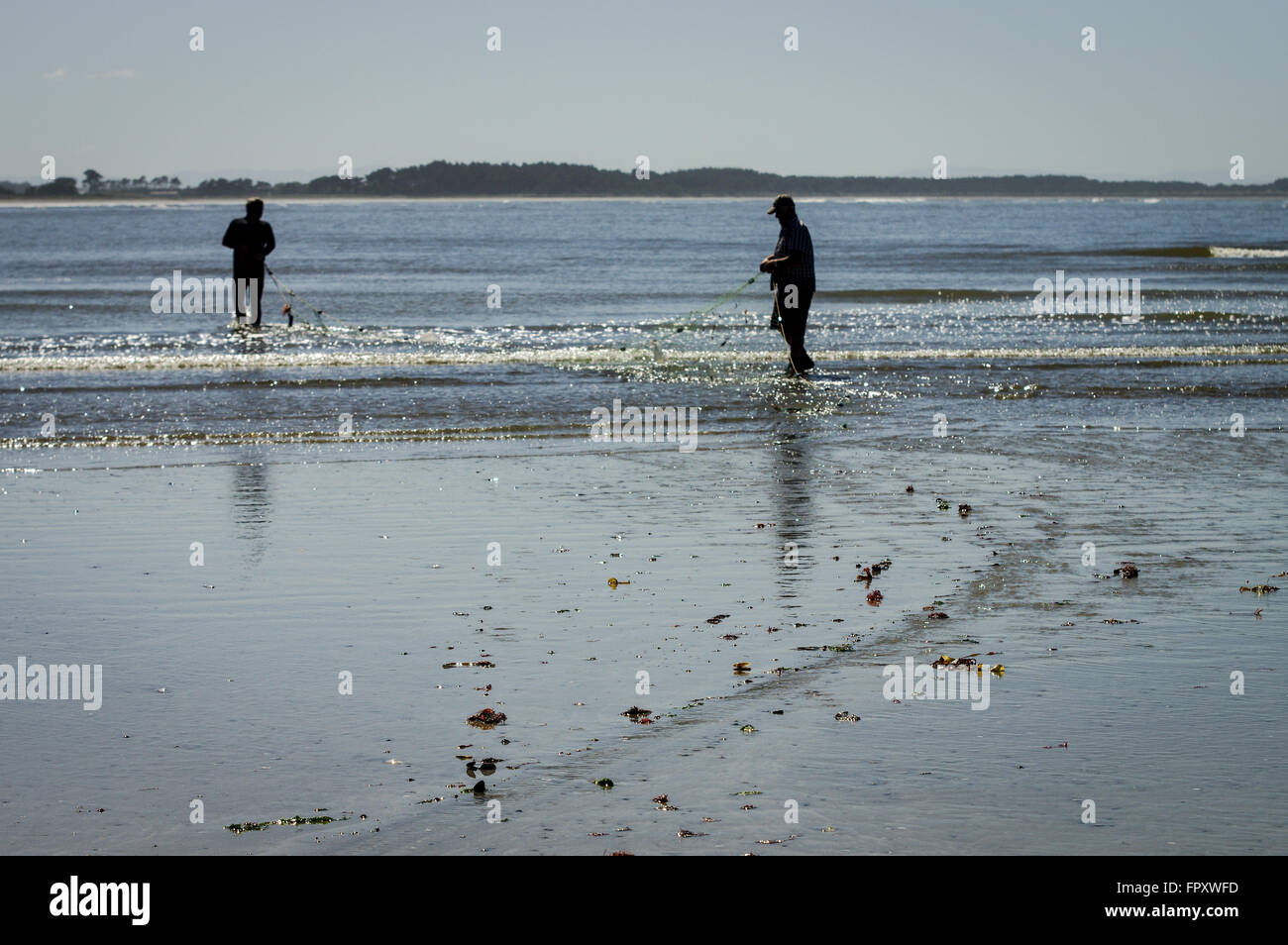 Flounder catching in Riverton, New Zealand - Stock Image