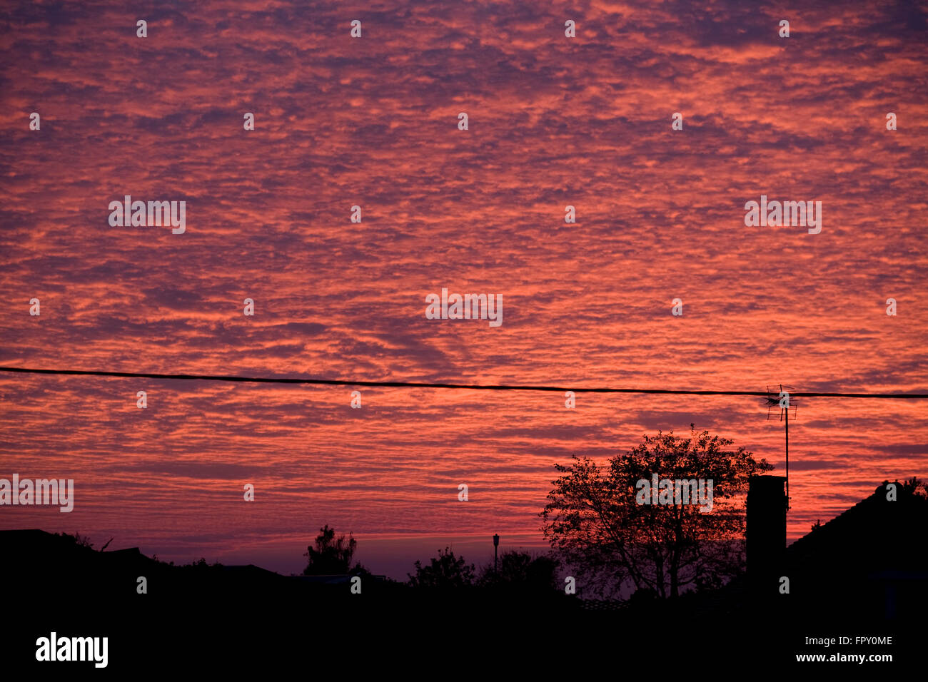 Red sky at sunset over rooftops and power line in Newton Porthcawl - Stock Image