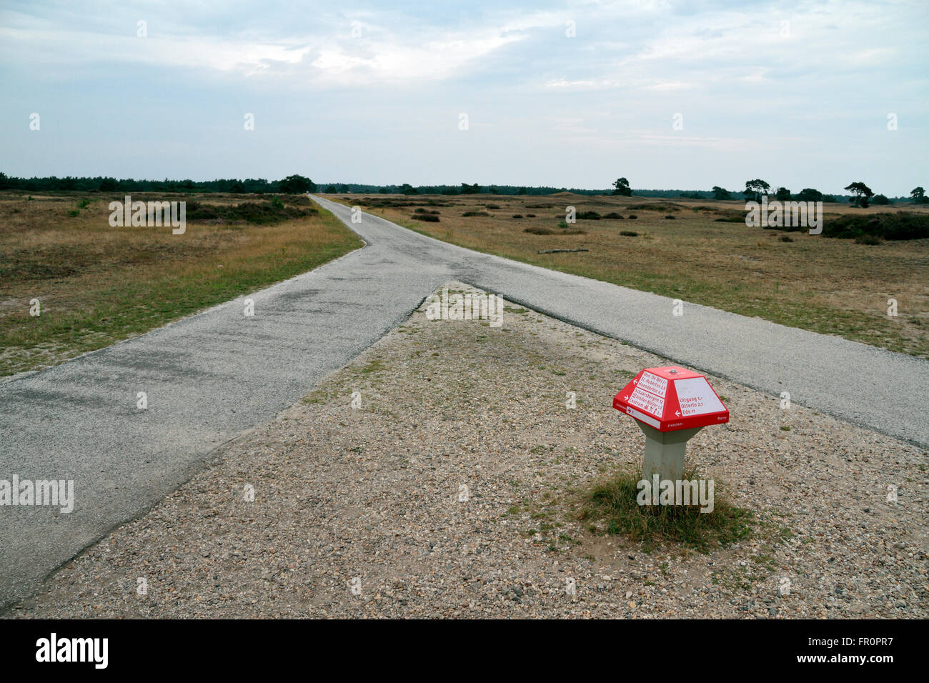 Cycle path direction marker in the De Hoge Veluwe National Park, Arnhem, Gelderland, Netherlands. - Stock Image