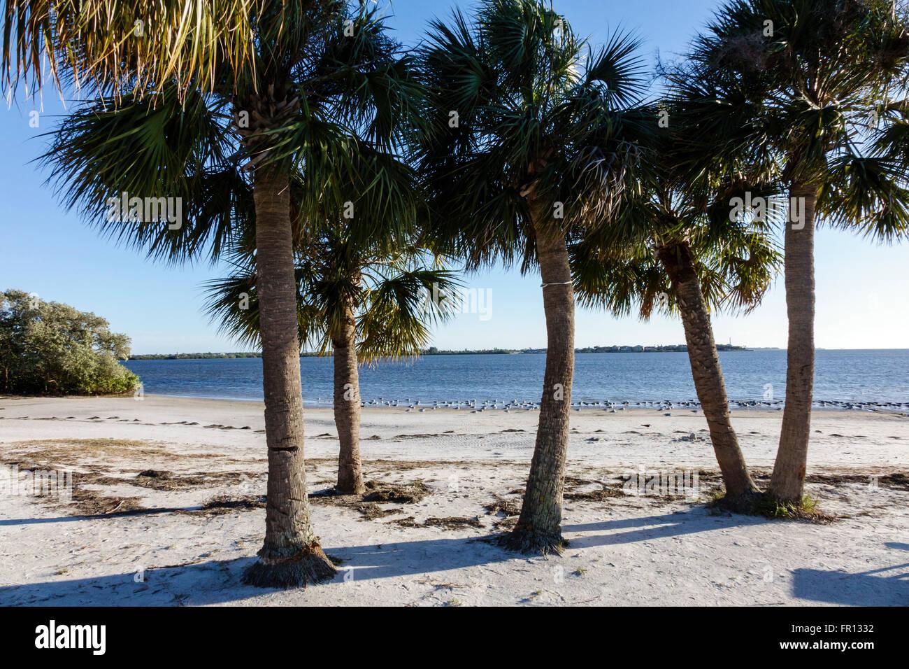 Green Key Beach Motel Port Richey Fl
