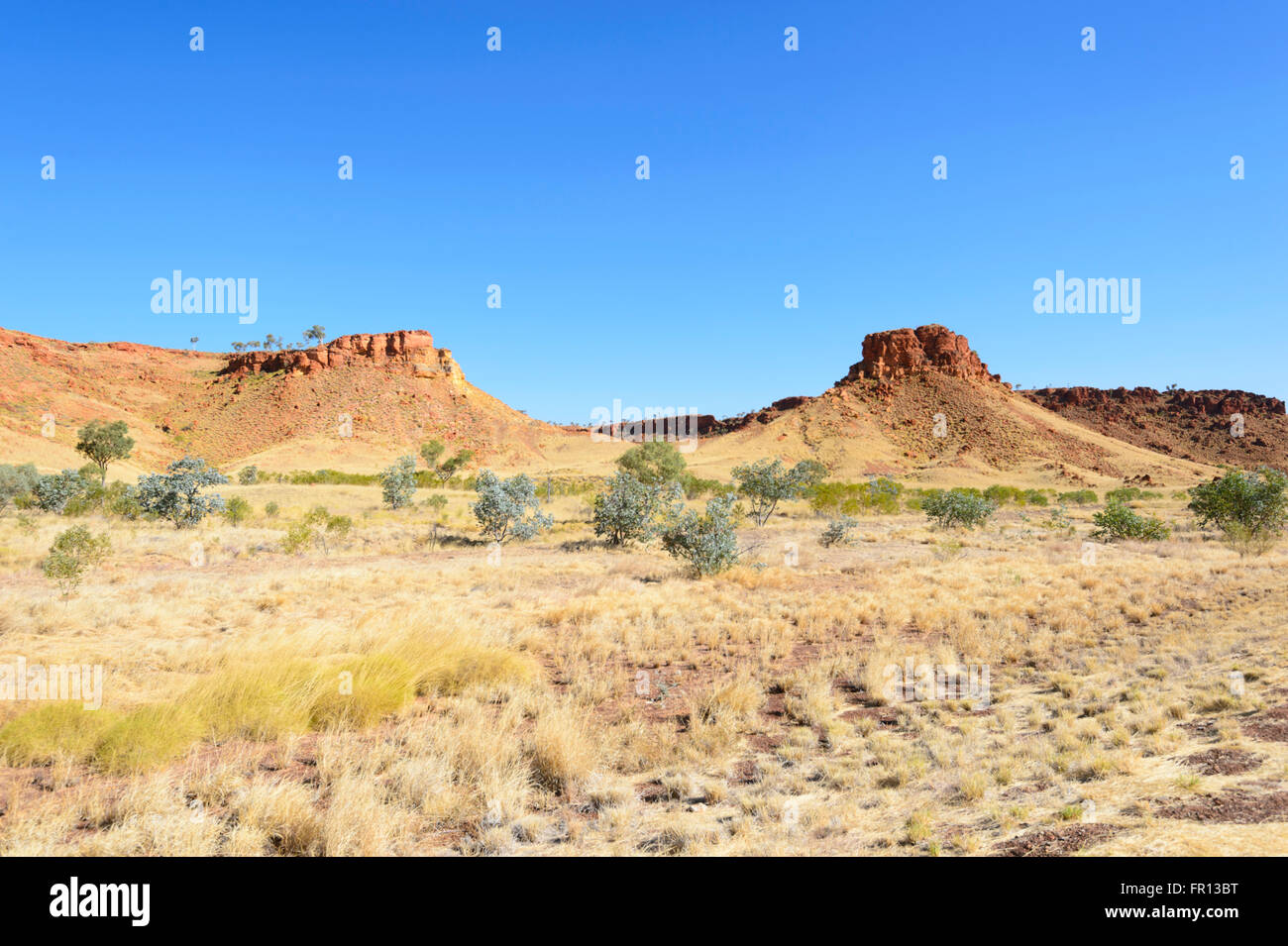 Arid region in the Outback by the Great Northern Highway, Western Australia, WA, Australia Stock Photo