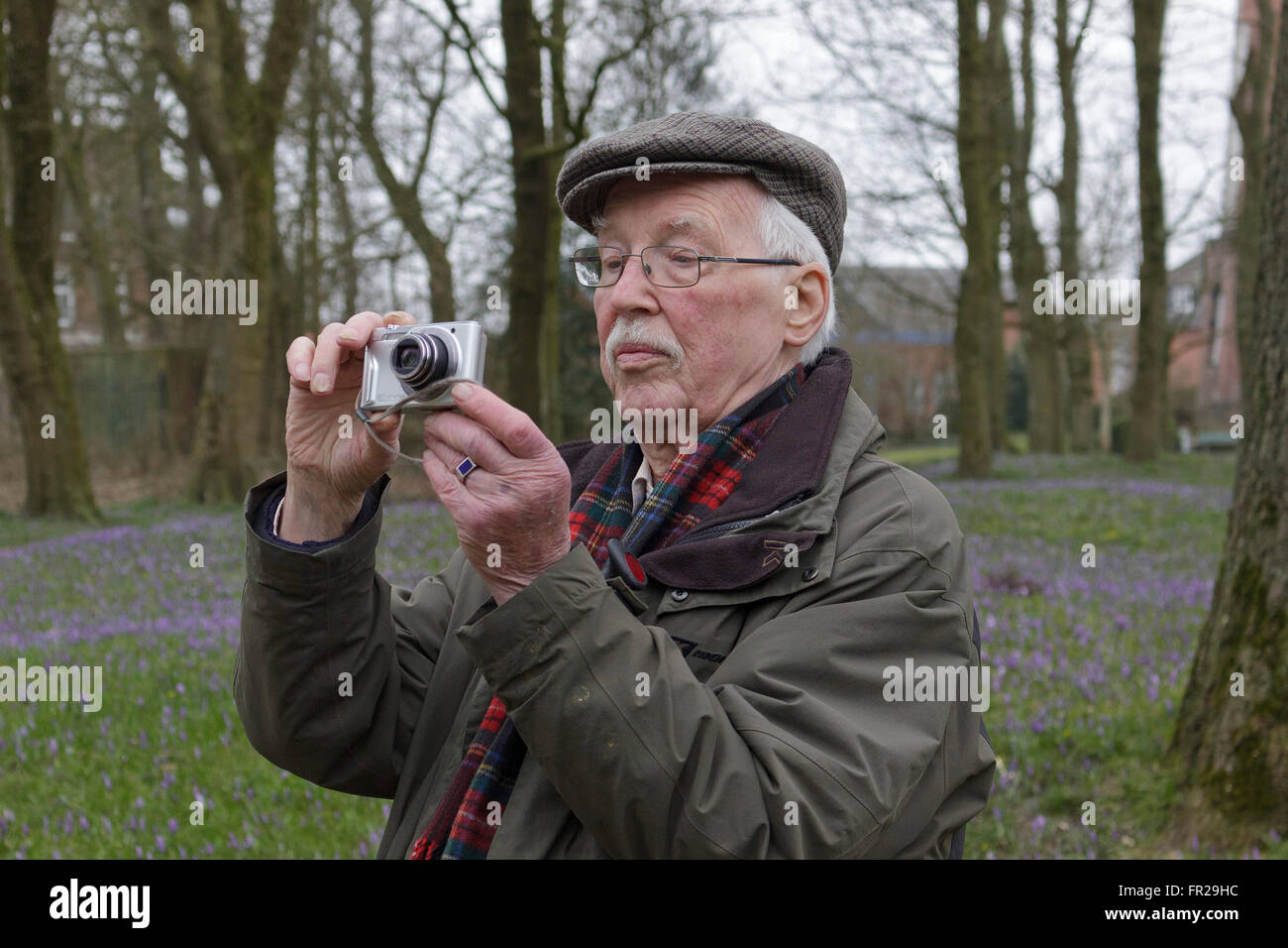 elderly man taking photos at the castle gardens, Husum, Schleswig-Holstein, Germany - Stock Image