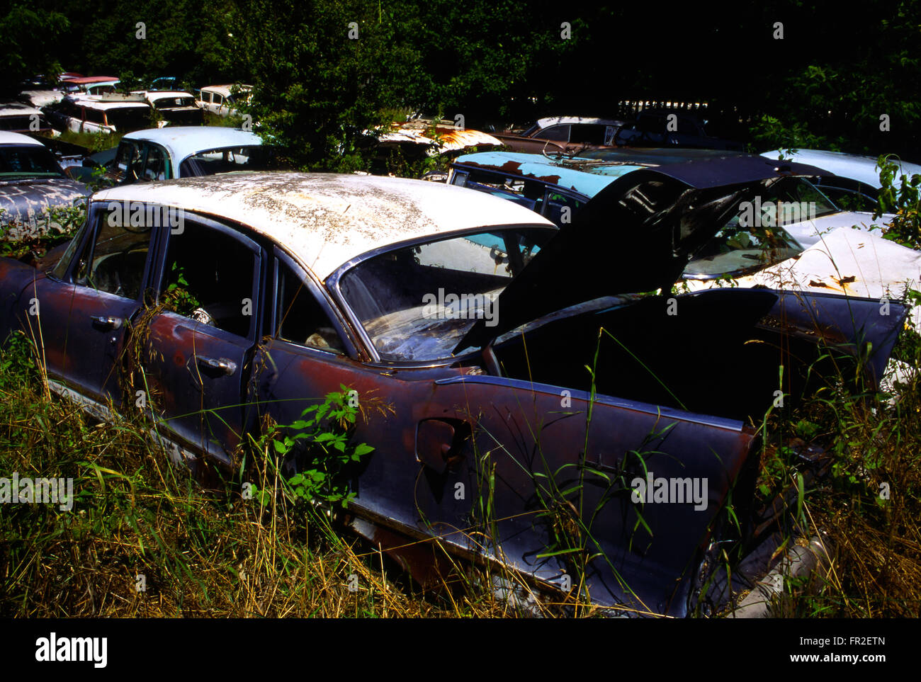 Old abandoned cars and pickup trucks in wrecking yard Stock Photo ...