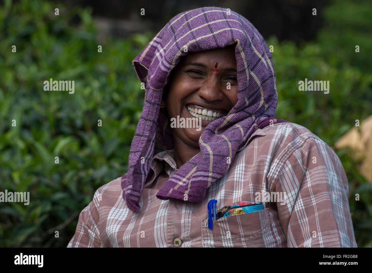 Tea Estate Female Worker, Western Ghats - Stock Image