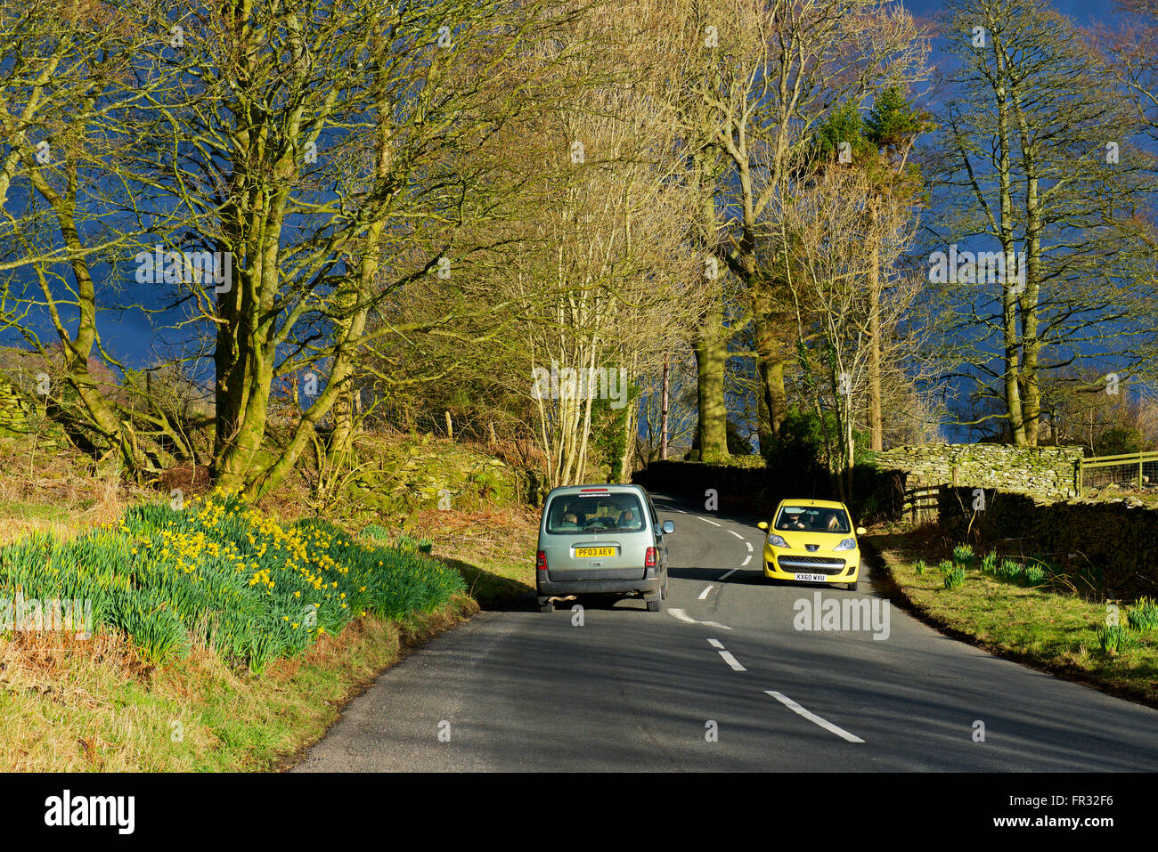 Two cars on country road in South Lakeland, Lake District National Park, Cumbria, England UK - Stock Image