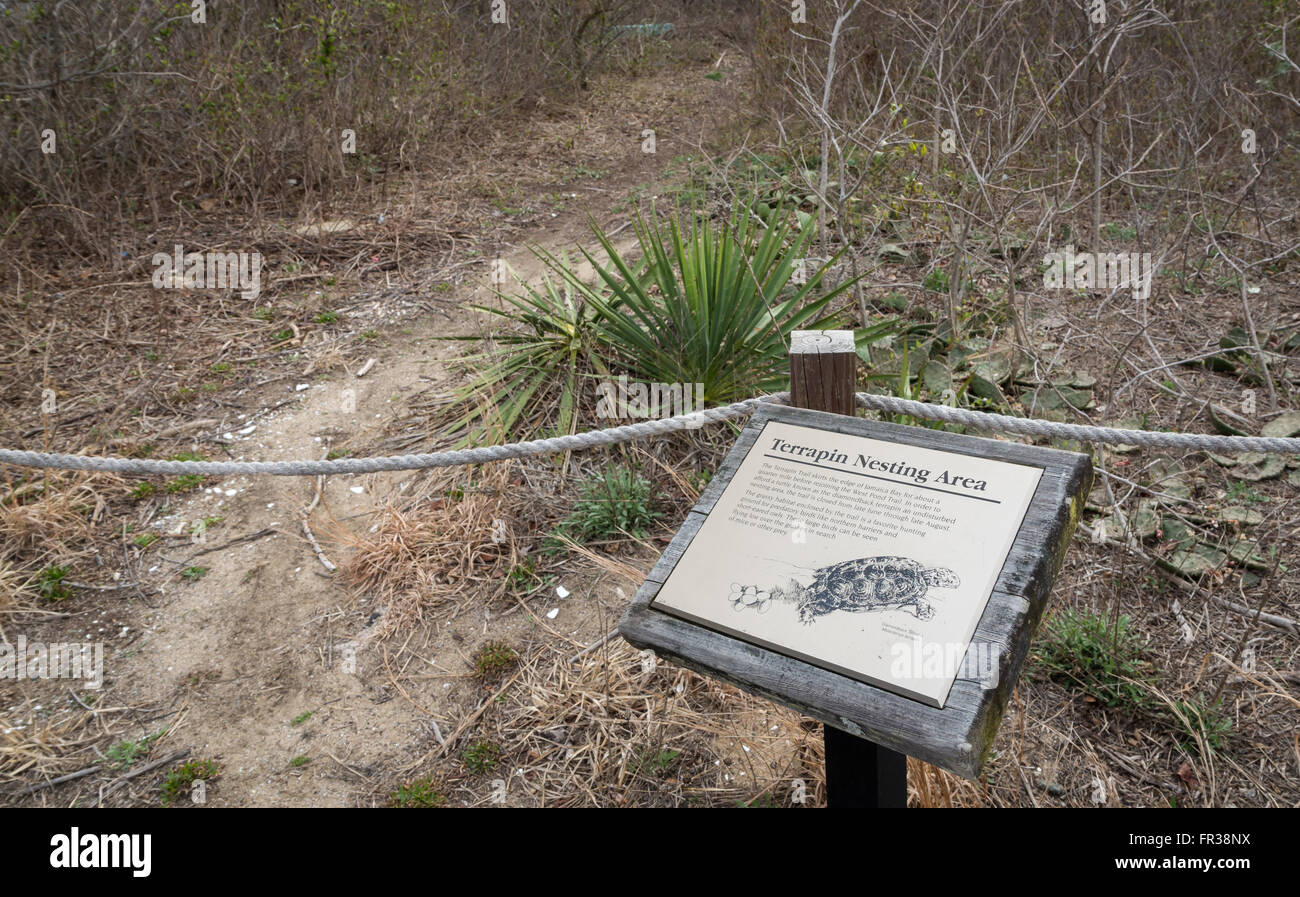 Sign indicating a protected terrapin nesting area in Jamaica Bay Wildlife Refuge, Queens, New York. - Stock Image
