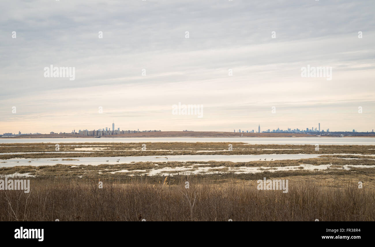 Landscape view across marshland at Jamaica Bay Wildlife Refuge towards Manhattan, with the skyline visible in the - Stock Image