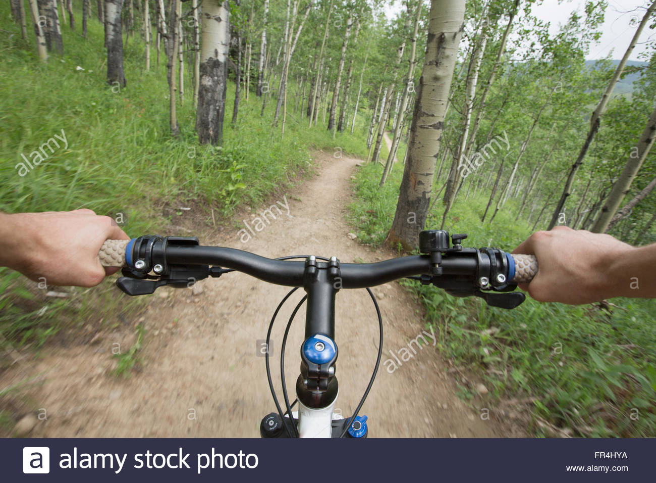 close up of hands gripping bike handles on woodland trail - Stock Image