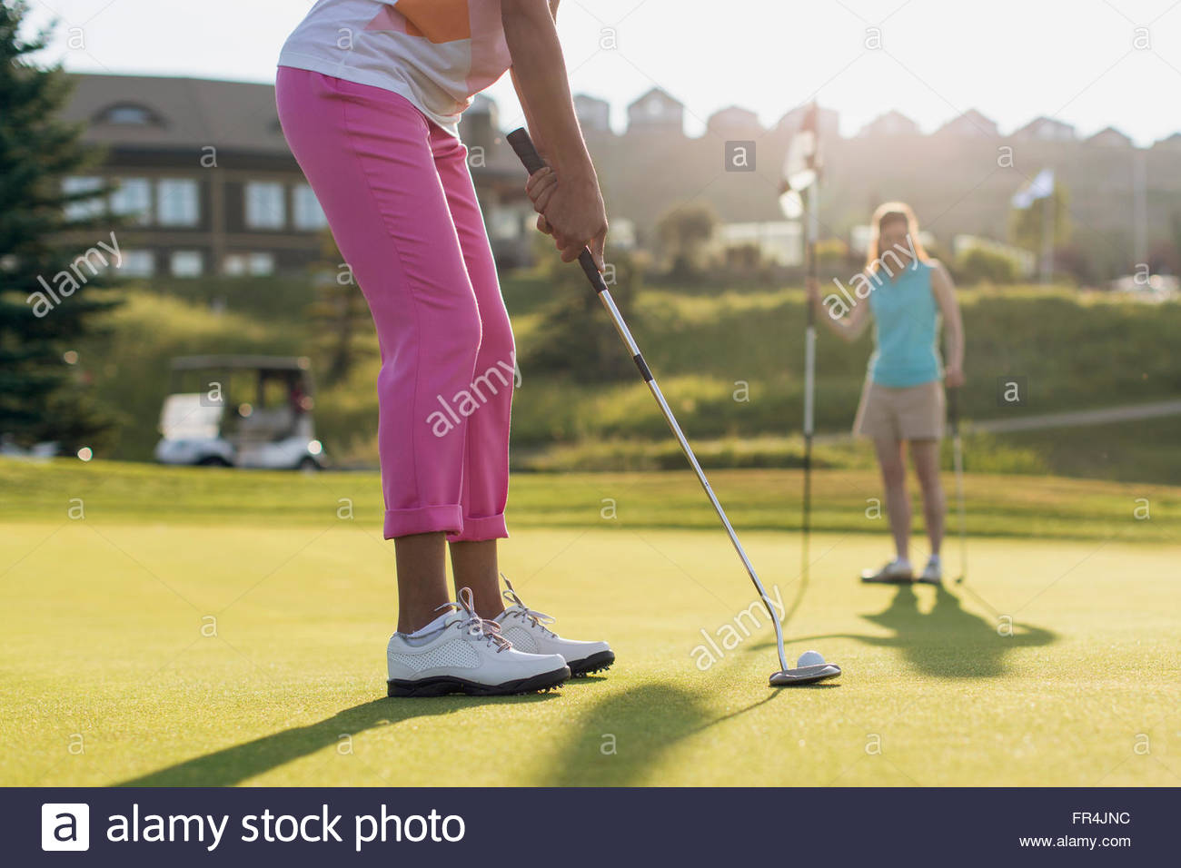 female golfer ready to putt on golf green - Stock Image
