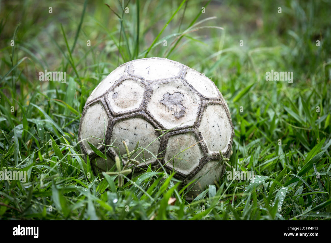 Old soccer ball in the grass on a rainy day. - Stock Image