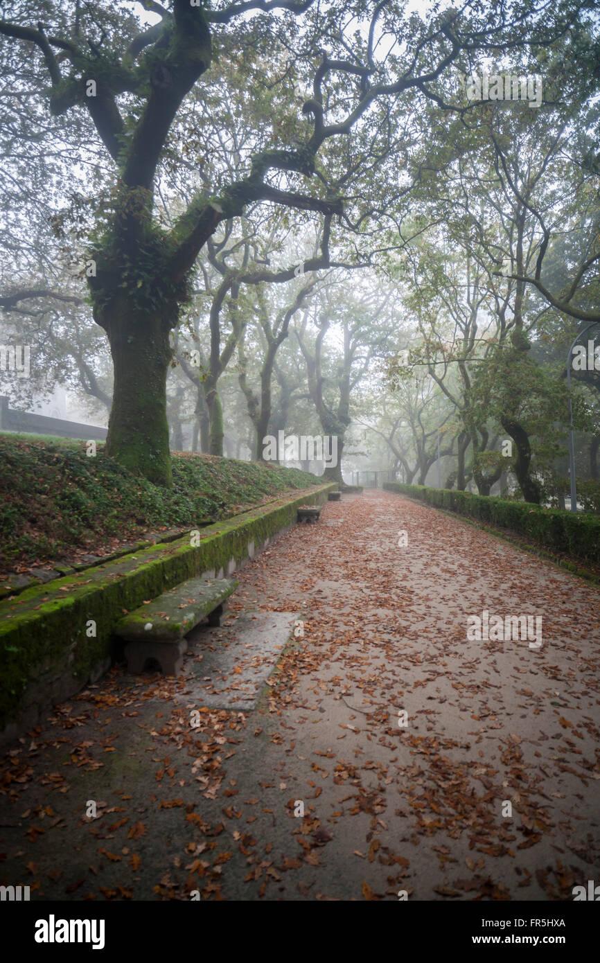 Parque de la Alameda in autumn. Santiago de Compostela. - Stock Image