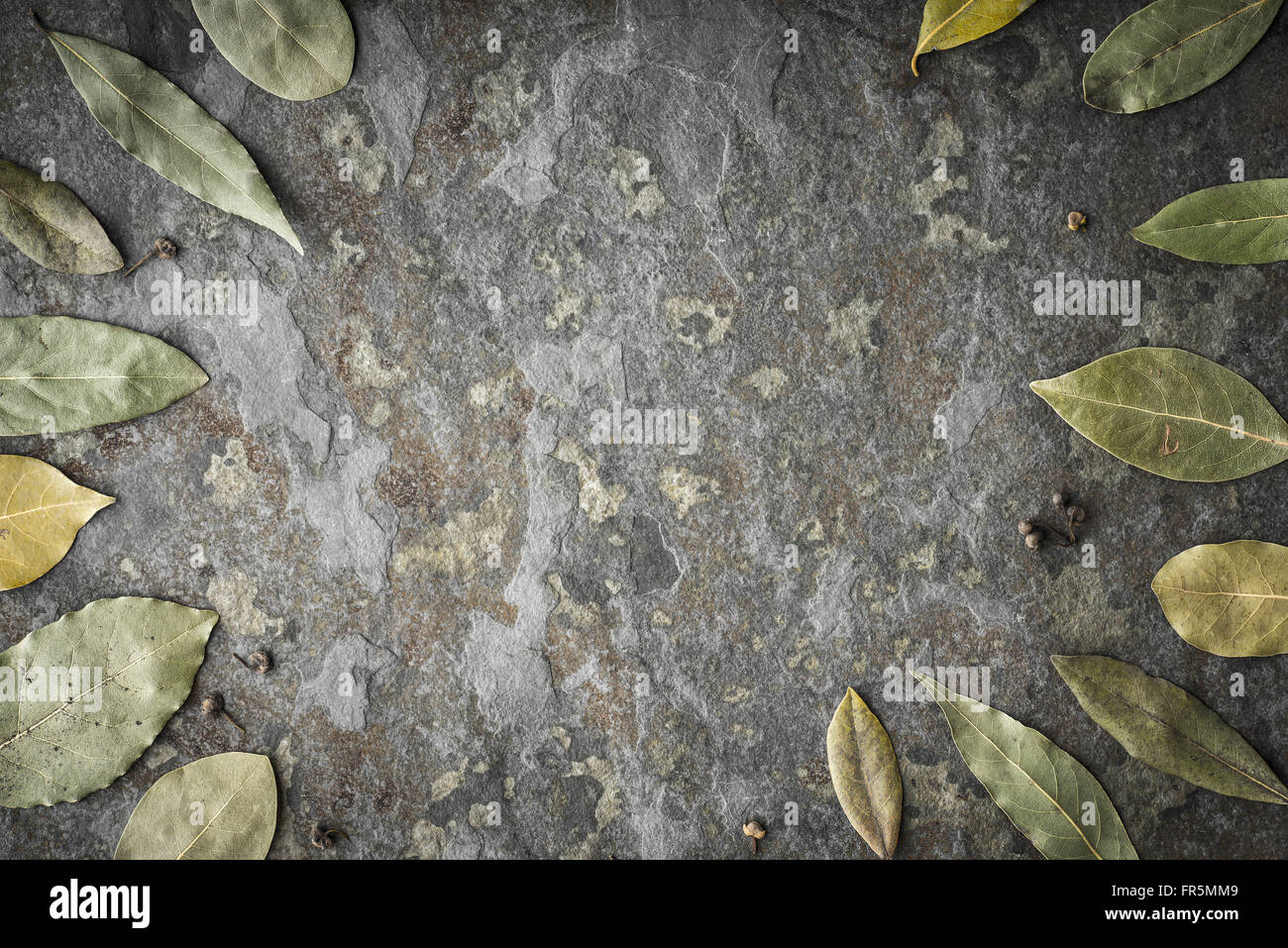 Leaves of the tree of the laurel on the stone table horizontal - Stock Image
