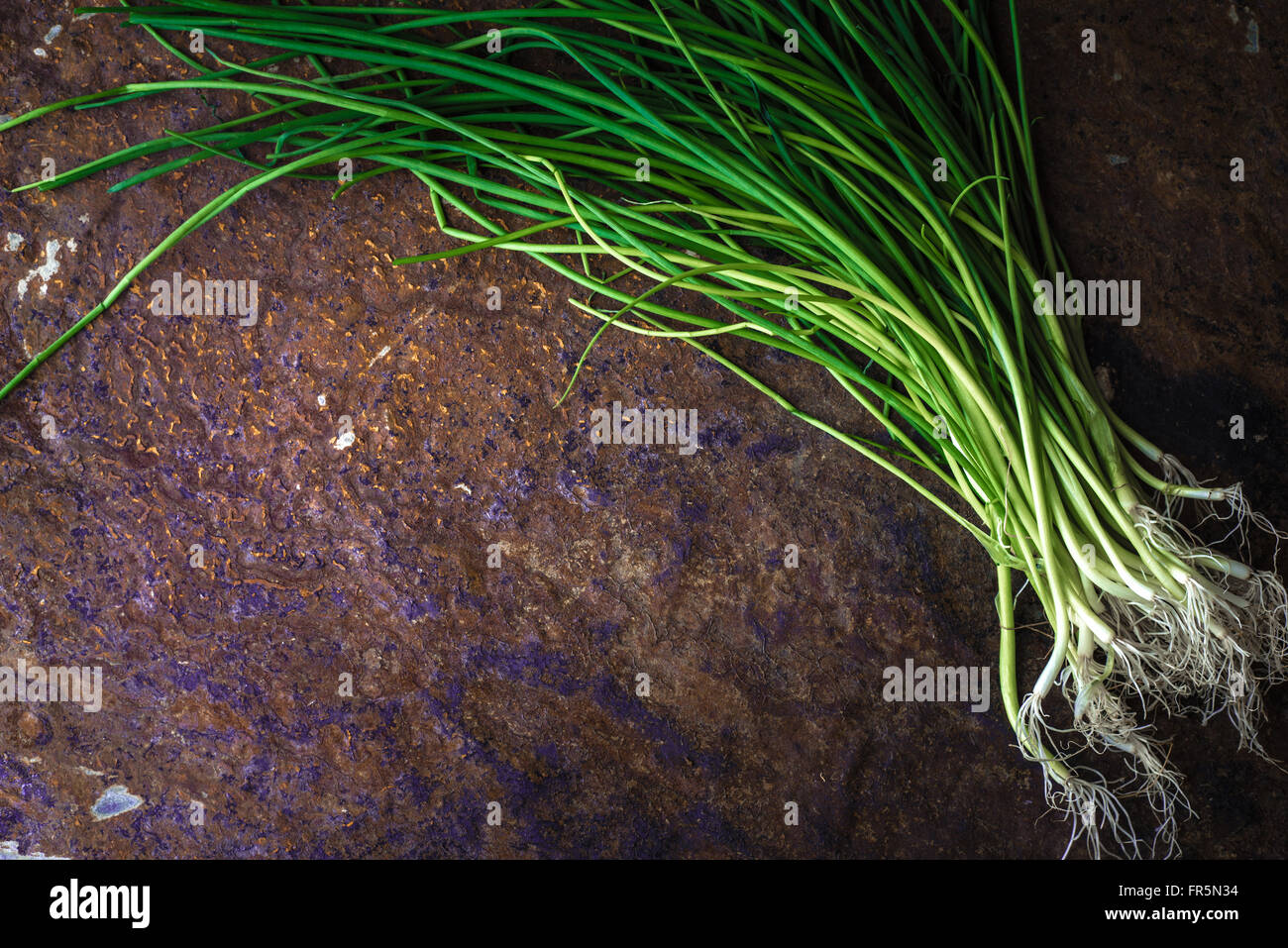Green onion stalks and roots on the stone table horizontal - Stock Image