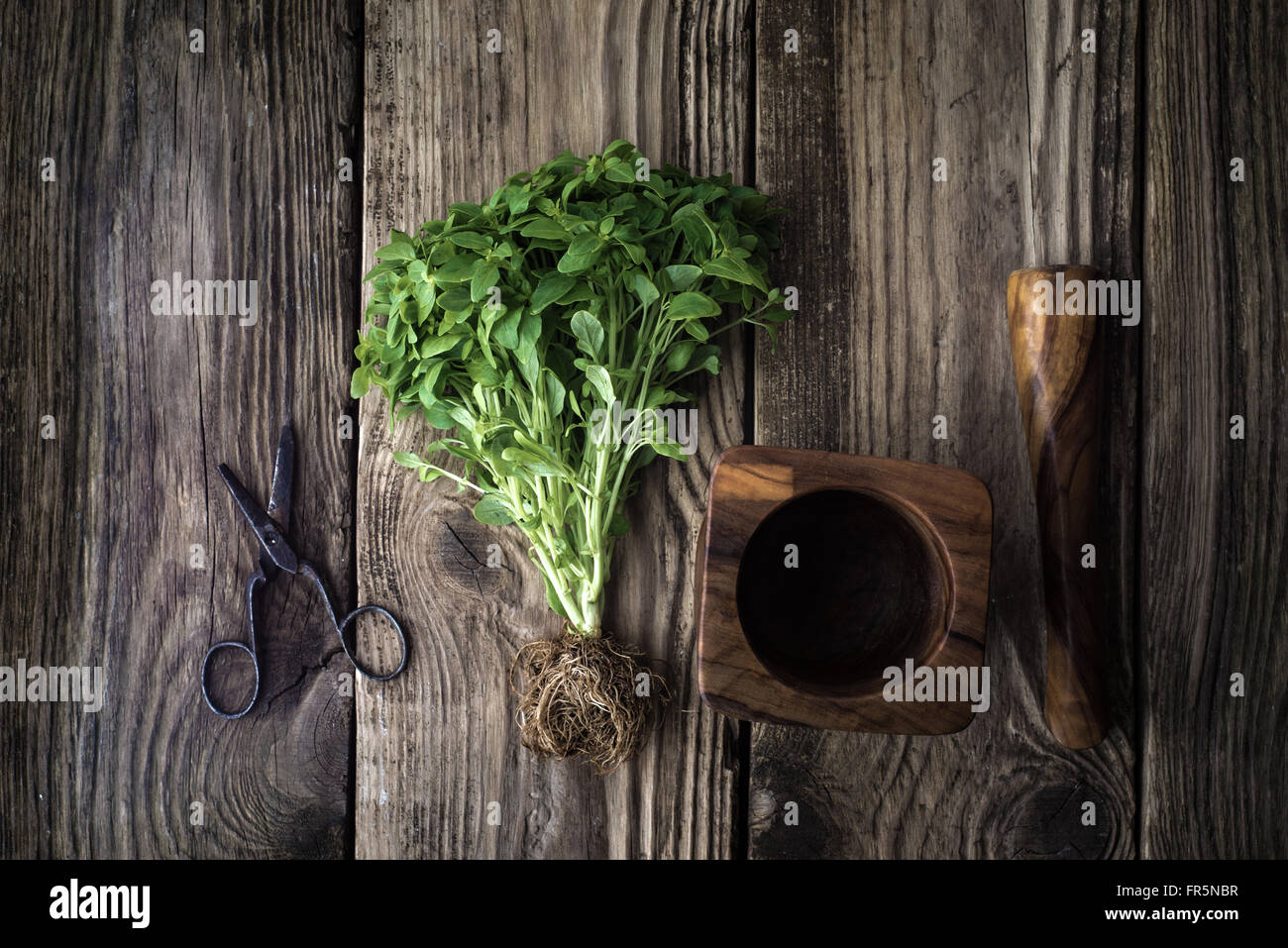 Basil, scissors and mortar on old boards horizontal Stock Photo
