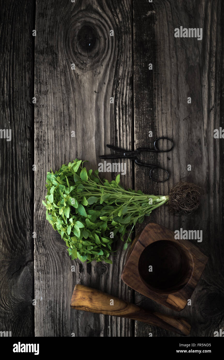 Basil, scissors and mortar on old boards vertical - Stock Image