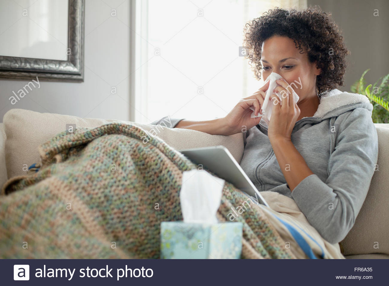 woman nurding a cold at home - Stock Image