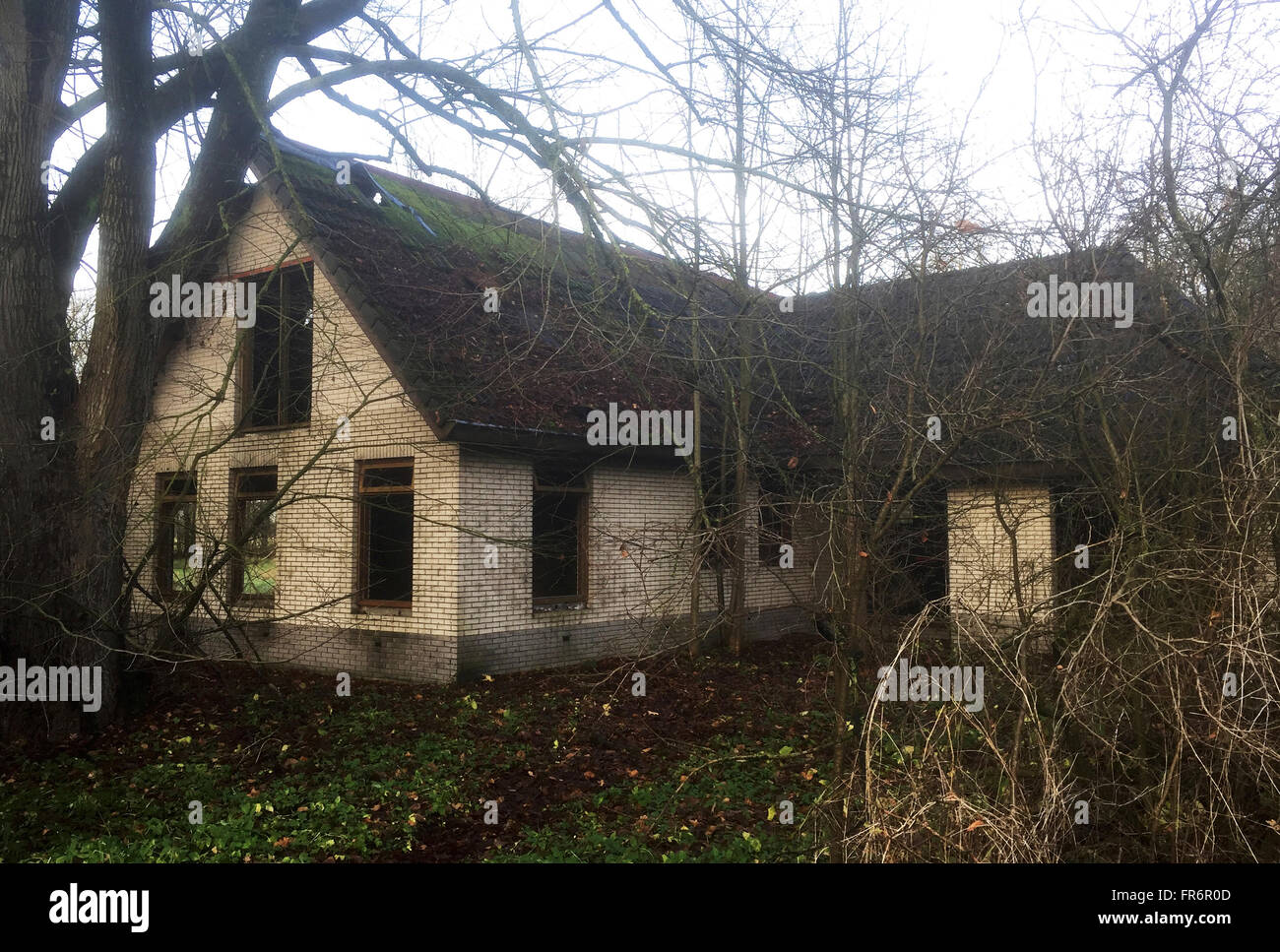 abandon house in the Netherlands - Stock Image