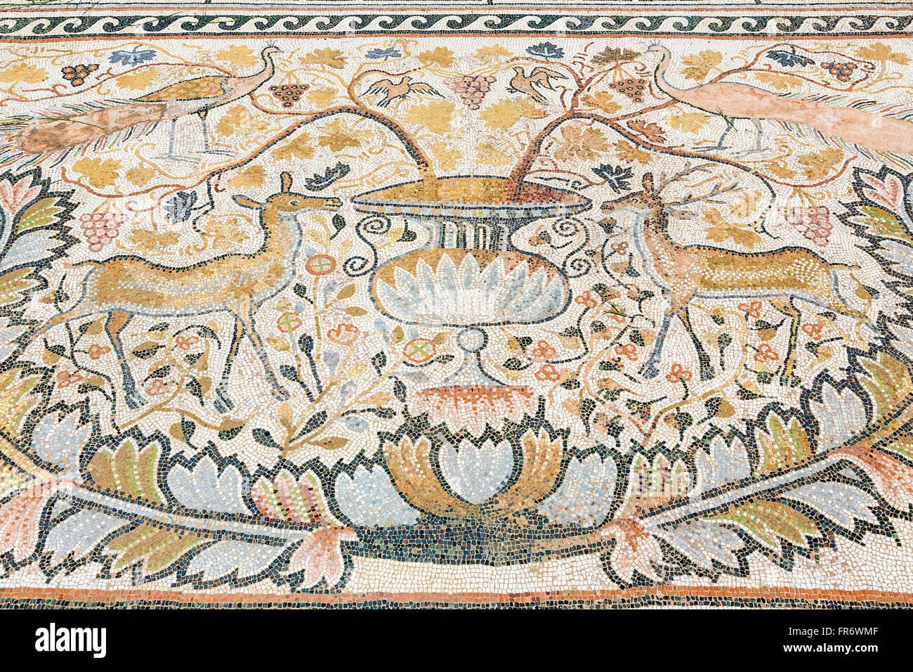 Republic of Macedonia, Bitola, the ruins of Heraclea Lyncestis - Stock Image