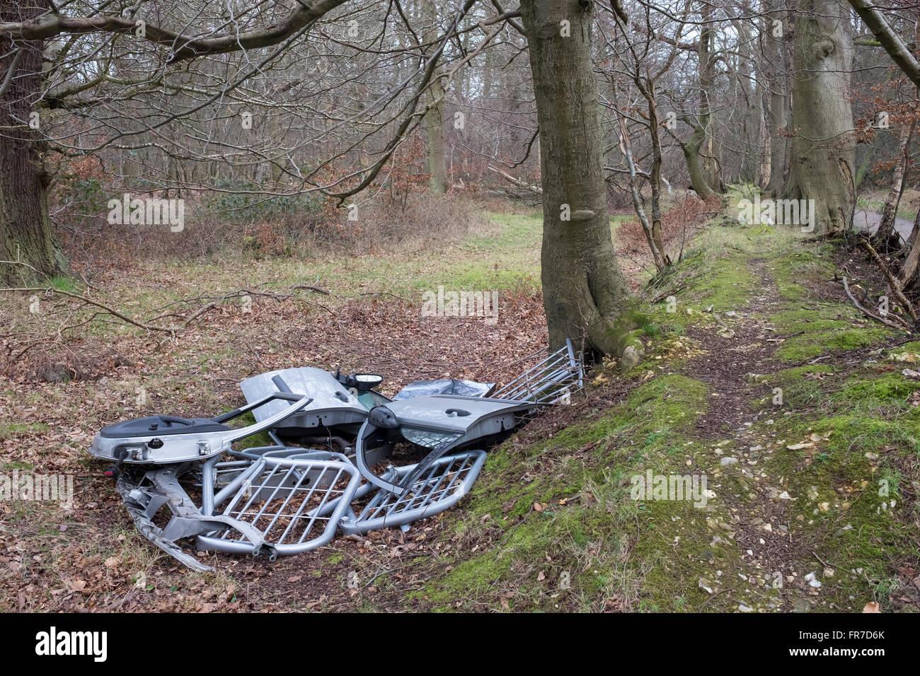 Fly Tipping Rubbish dumped in Ashridge Forest, Hertfordshire mail@davidlevenson.com - Stock Image