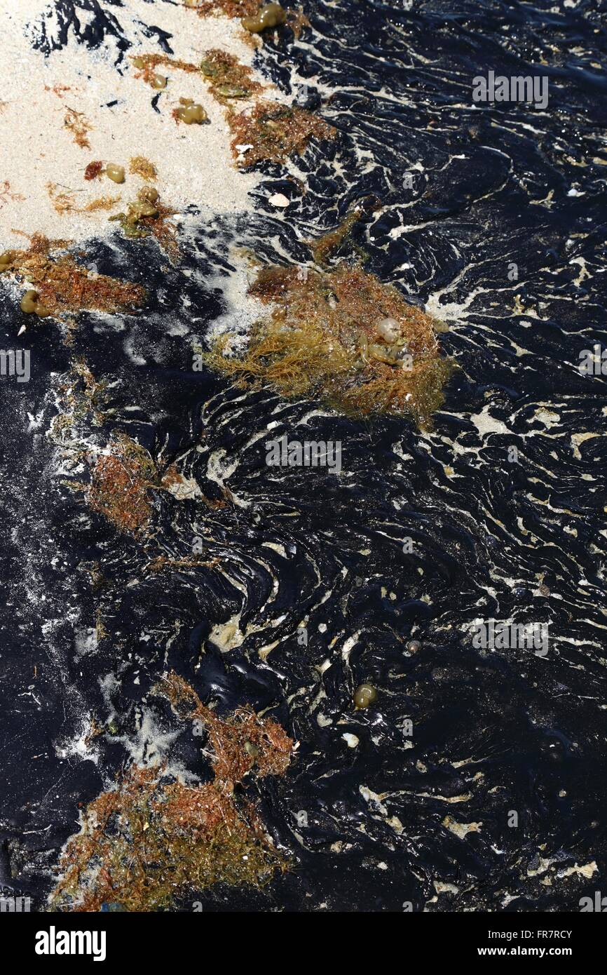 oil spill solidified after years of contamination - Stock Image
