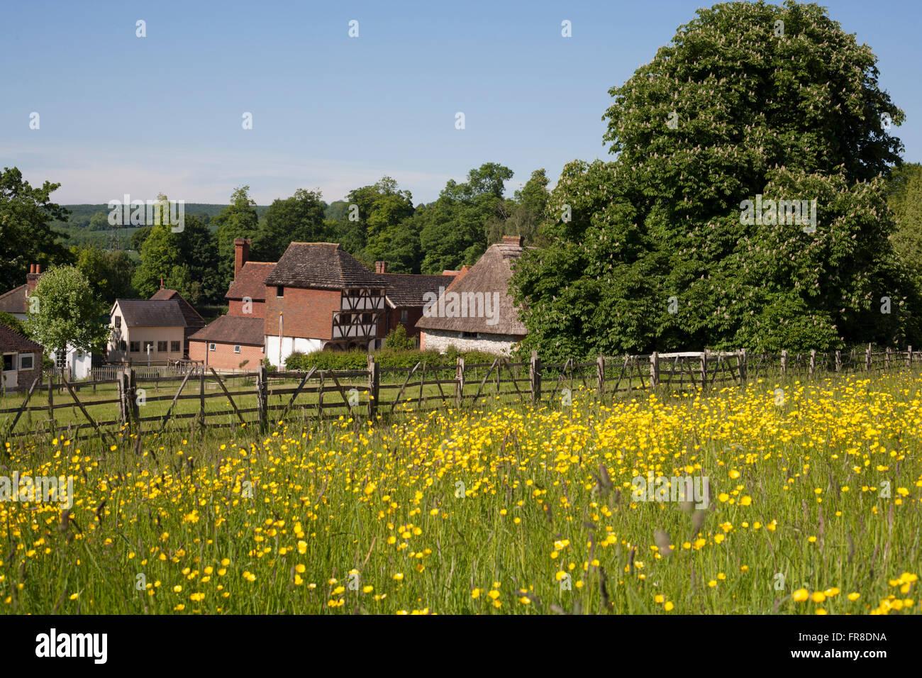 Weald & Downland Open Air Museum.Singleton,West Sussex , England. - Stock Image