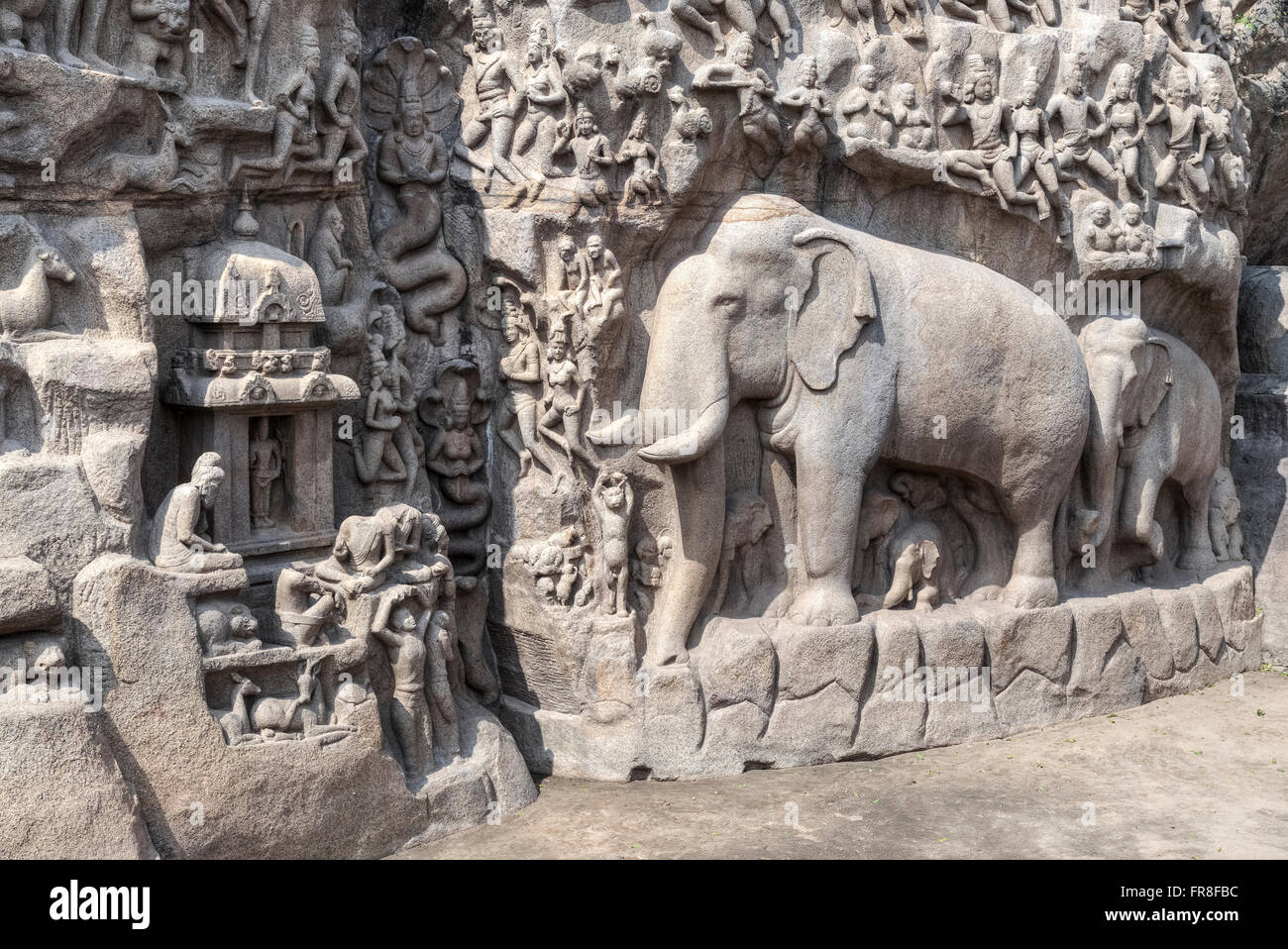 Descent of the Ganges, Mahabalipuram, Tamil Nadu, India, Asia - Stock Image
