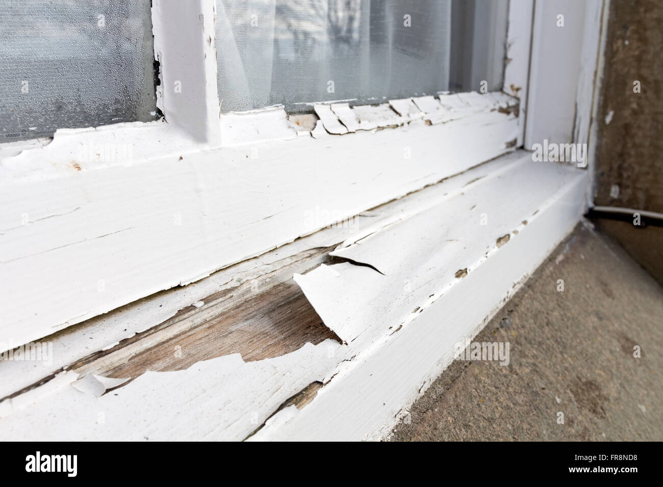 Missing and peeling paint on a property where the landlord has failed to maintain it UK. - Stock Image