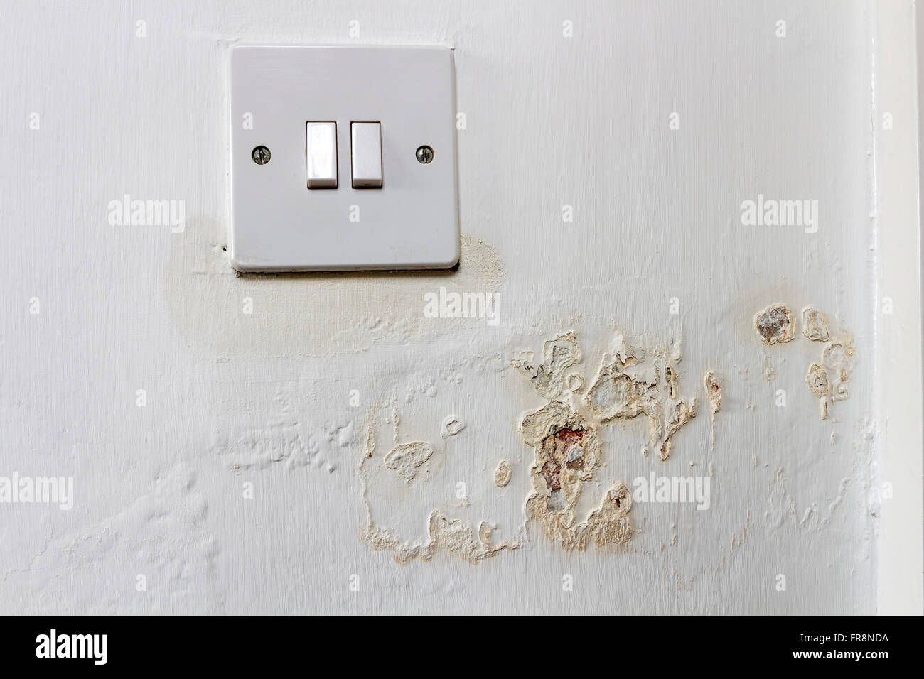 Damp Leaching Out of a Wall and Around a Light Switch in a Rented ...