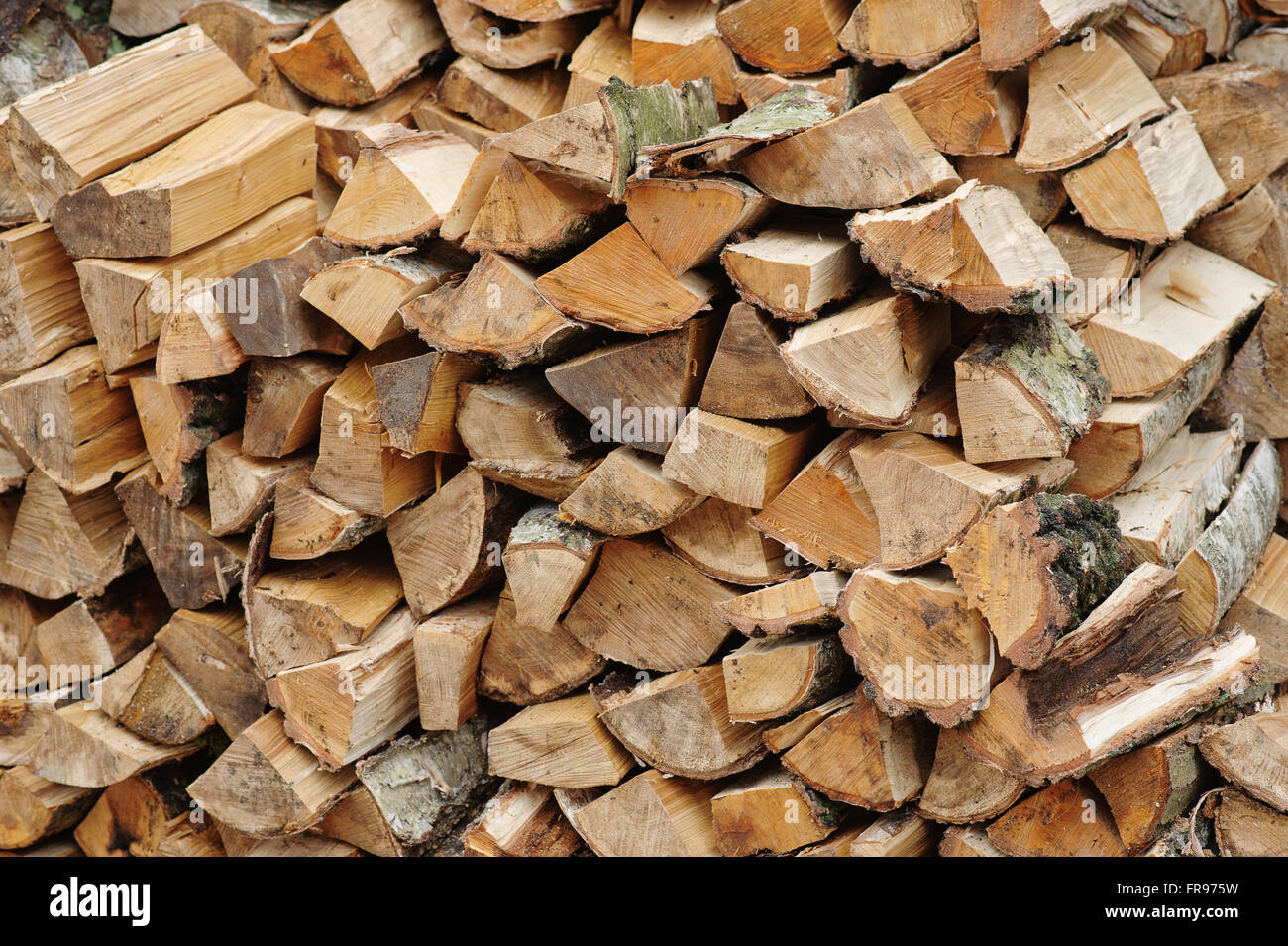 Of woodcutter axe Stock Photo