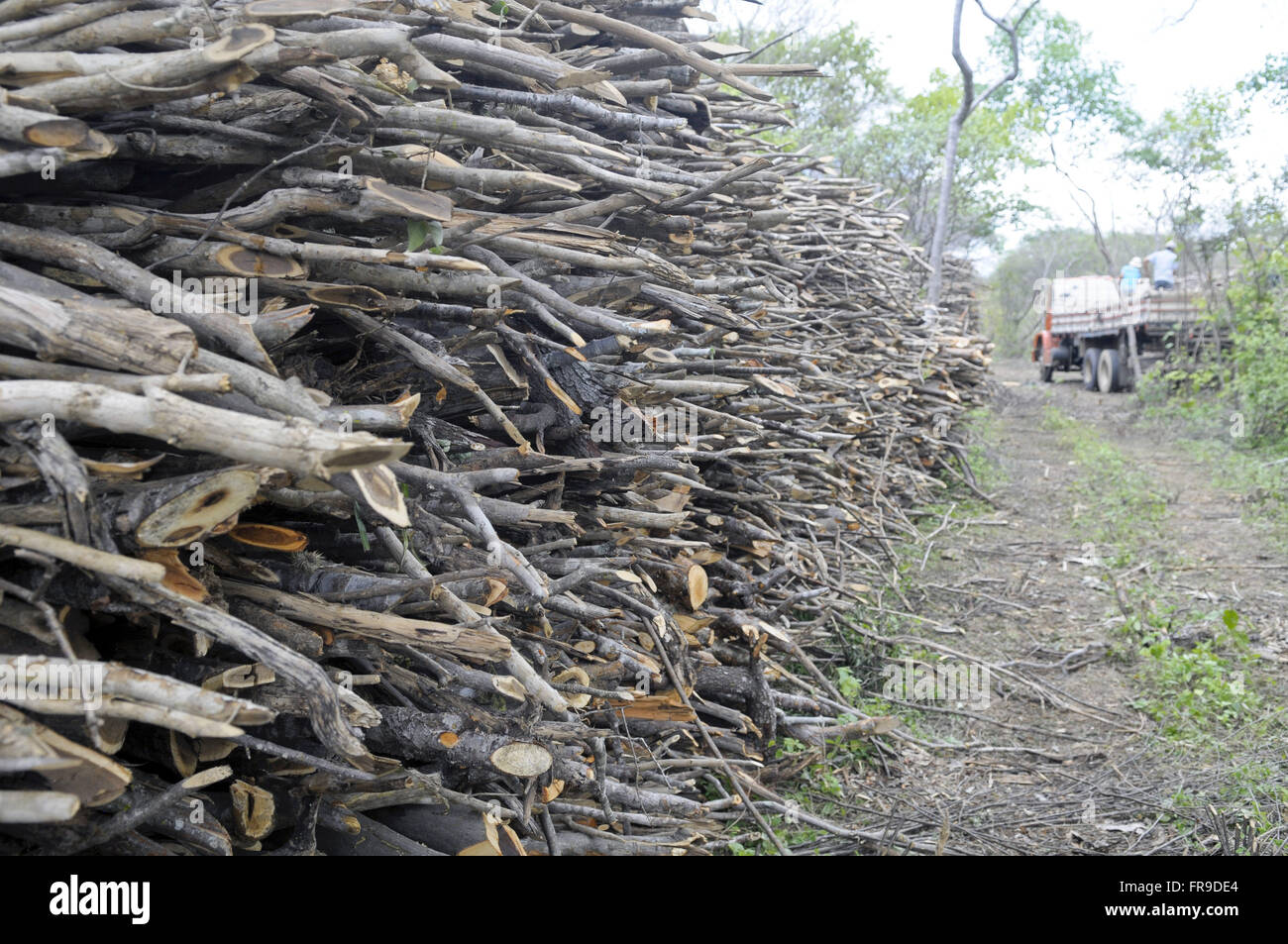 Buyers truck carrying firewood New Hope Community - Stock Image