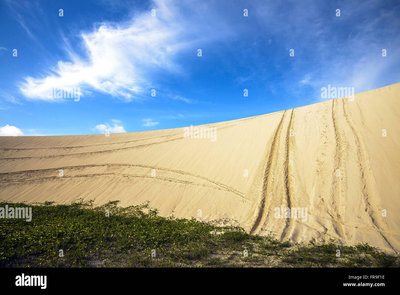 Sand dunes with tire tracks of buggys in Jericoacoara National Park - Stock Image