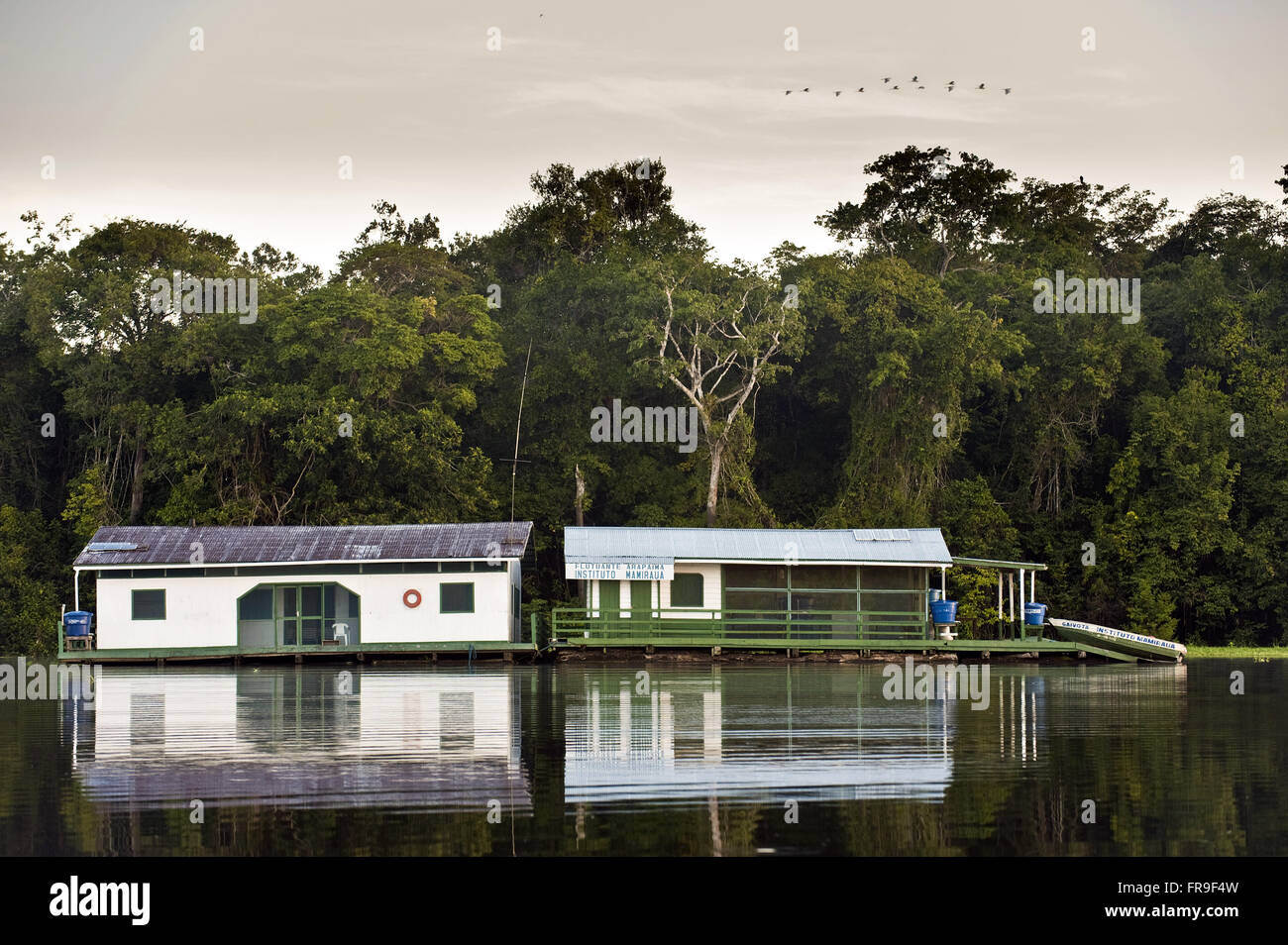 Floating bases of the Sustainable Development Institute Mamiraua and Amana - Stock Image