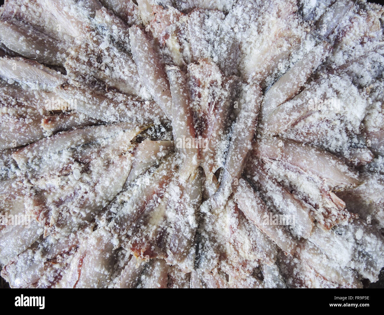 Detail of salted fish for sale in the Municipal Market - Stock Image
