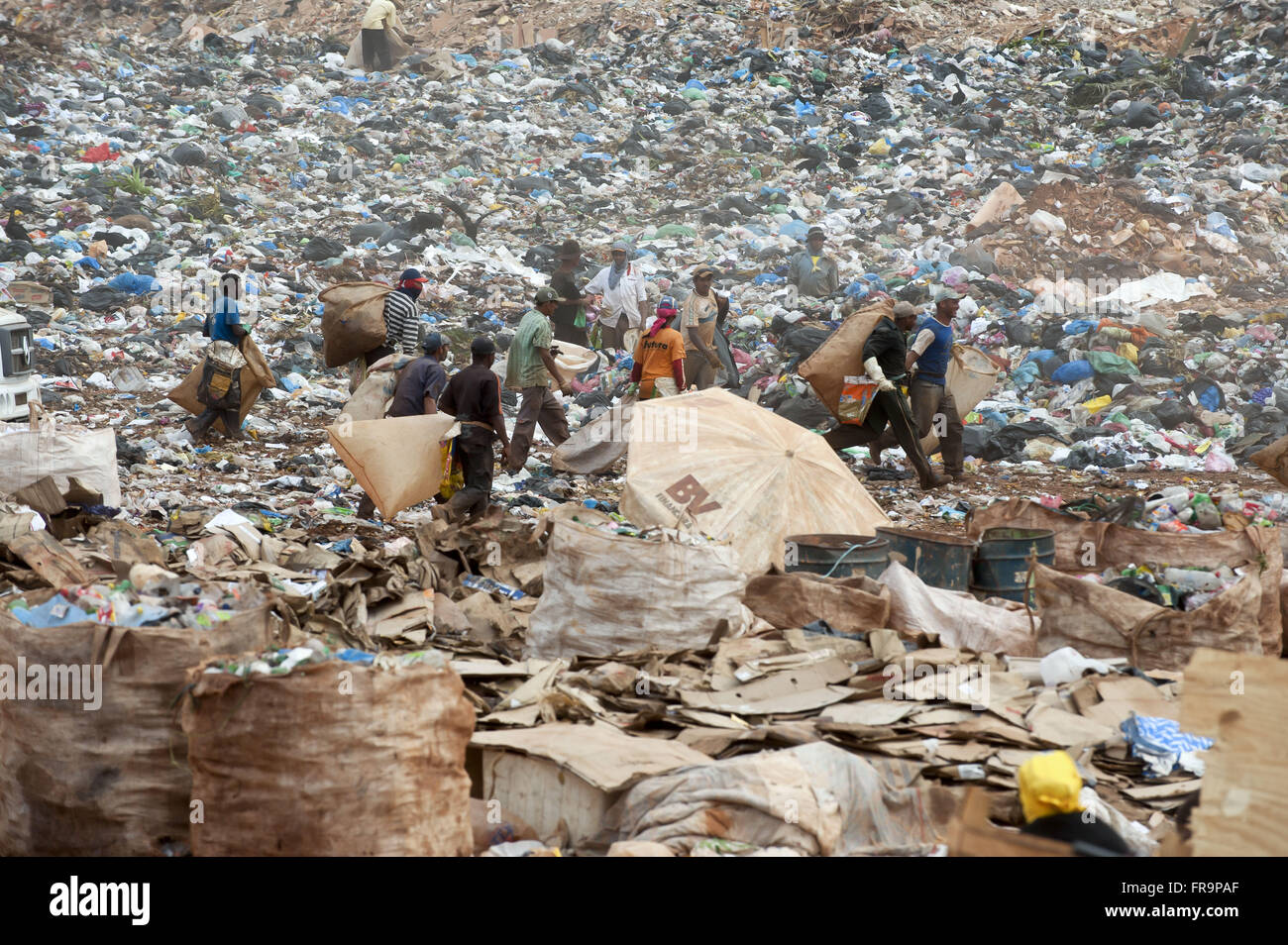 Scavengers at the dump of Structural city of Brasilia - Stock Image