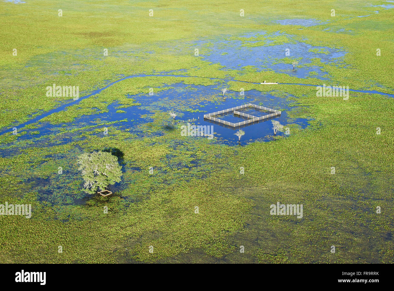 Aerial view of flooded farm corral the period of the rains - Pantanal of Barao de Melgaco - Stock Image
