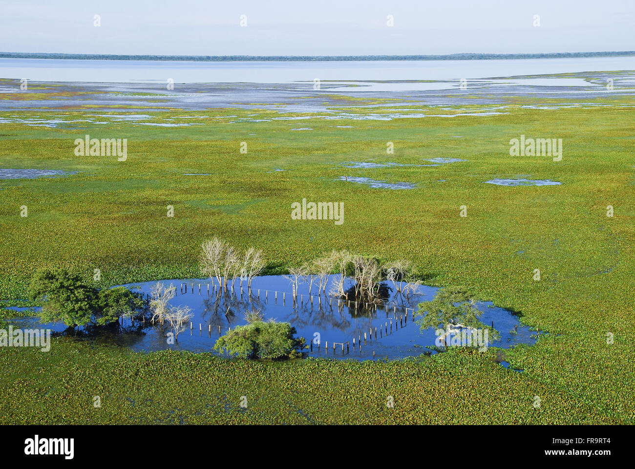 Aerial view of farm flooded by rains period - Pantanal of Barao de Melgaco - Stock Image