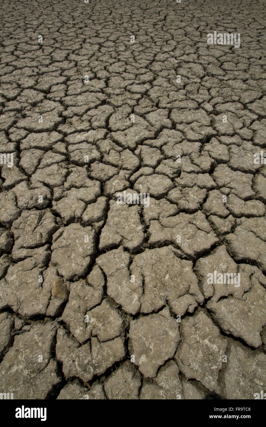 Dry and cracked earth due to drought - Stock Image