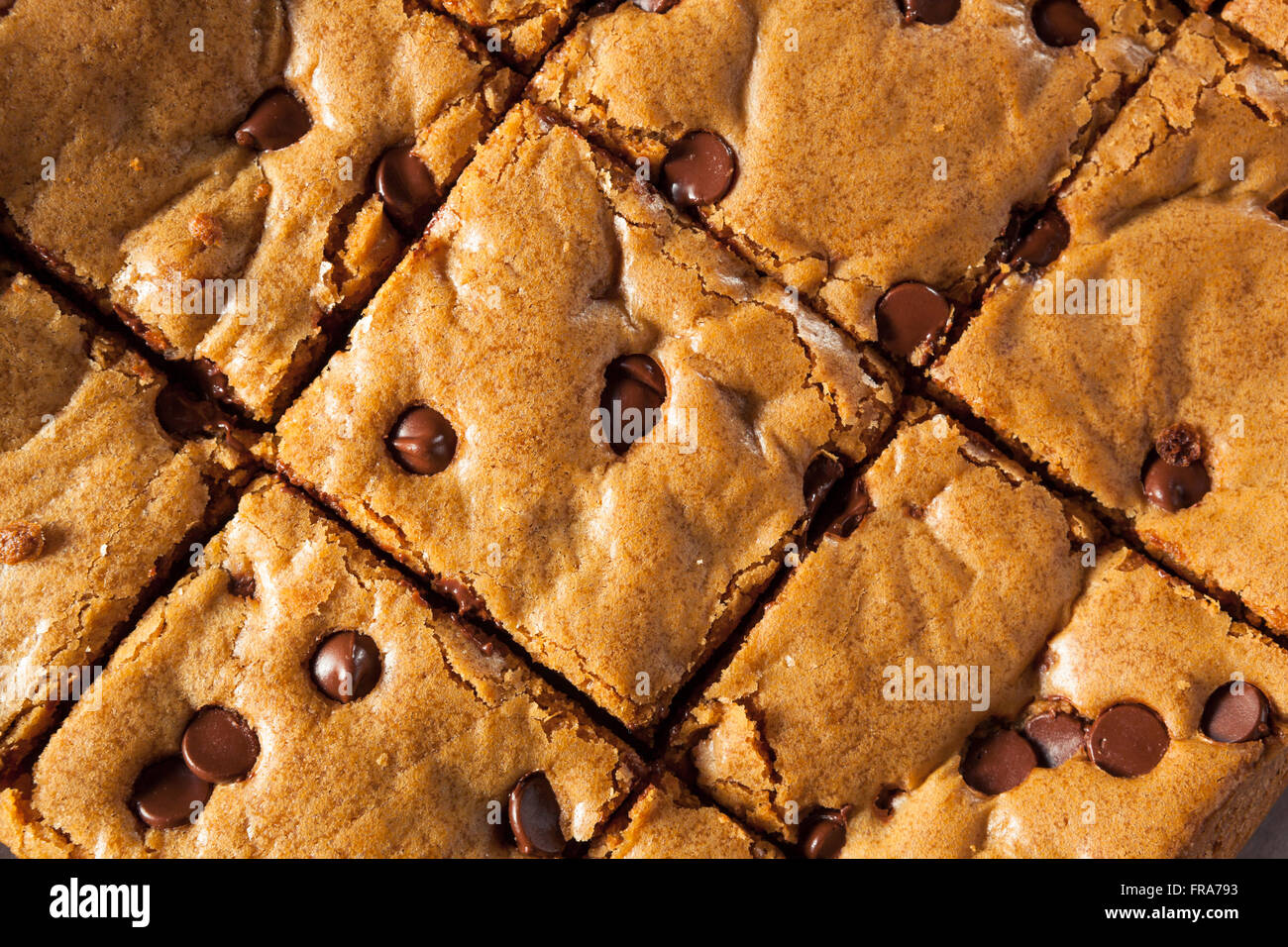 Homemade Chocolate Chip Blondies Cut Into Squares - Stock Image