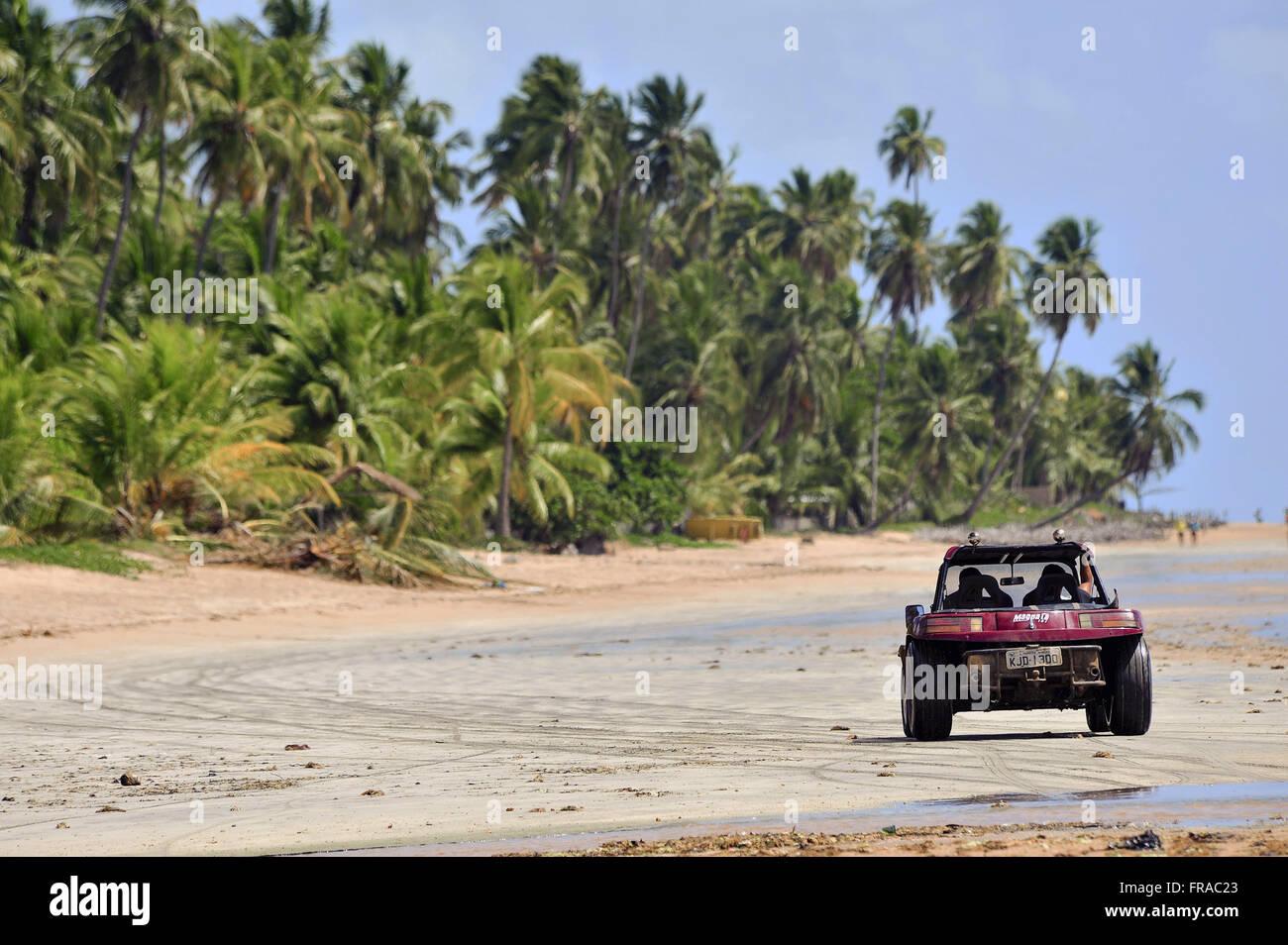 Passeio de buggy na  Praia de Japaratinga com coqueiros ao fundo - Stock Image