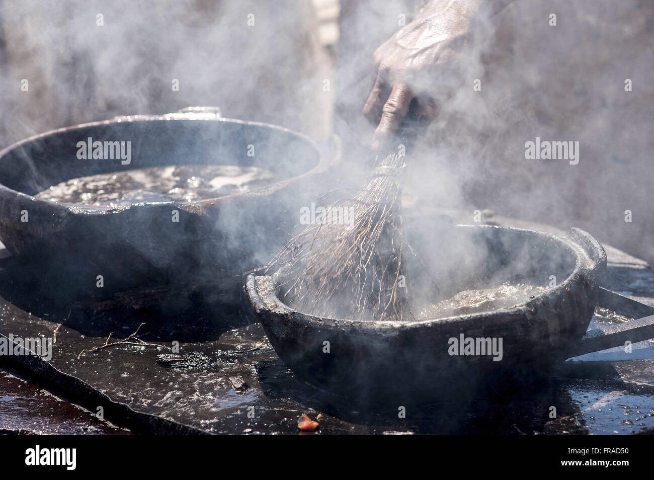 Painting pots with tannin extracted from the red mangrove - clay pots Production Stock Photo